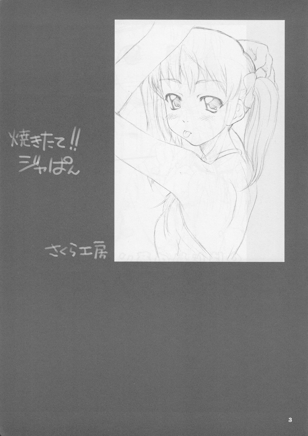 Tsuki no hikari 3