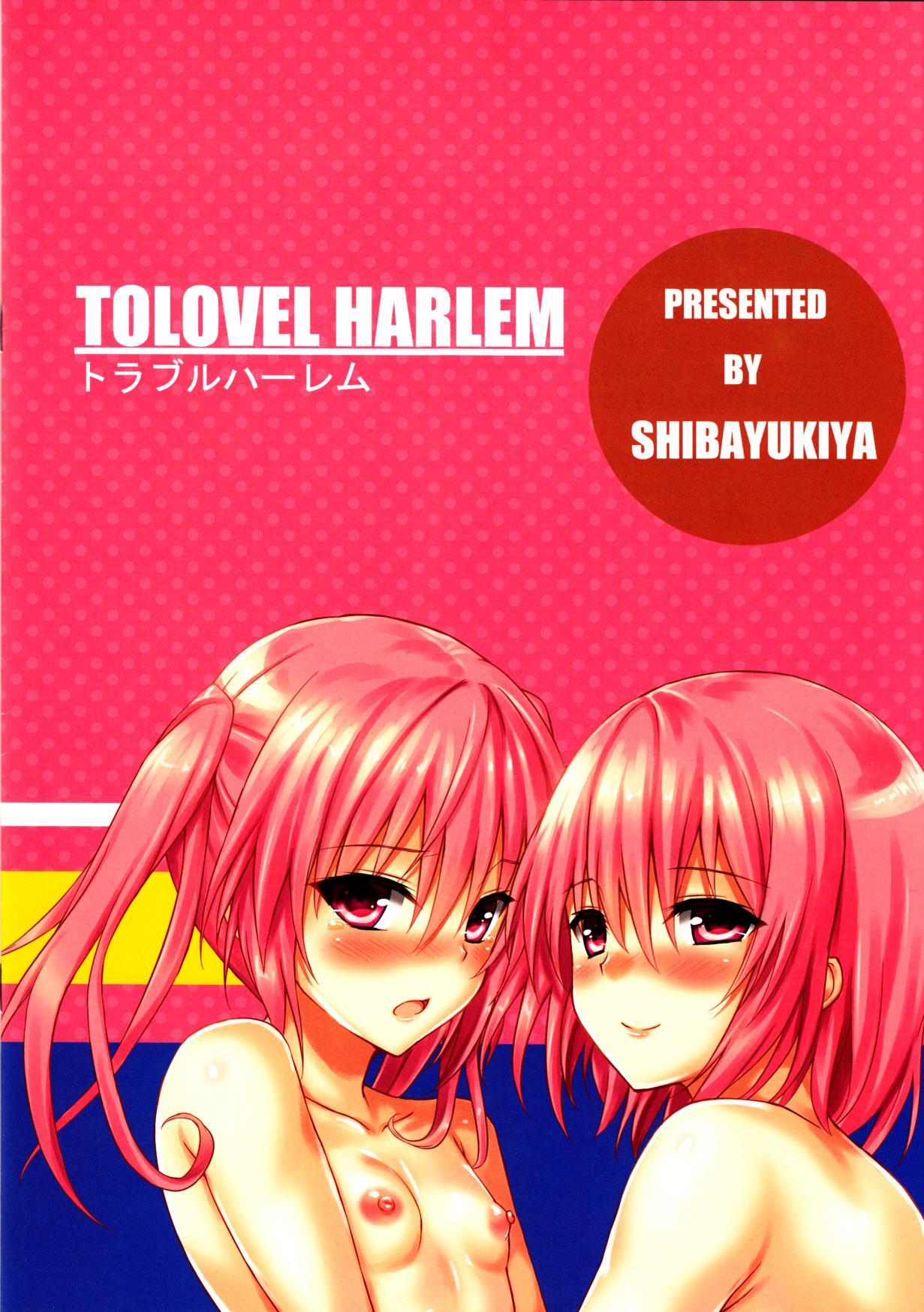 TOLOVEL HARLEM 11