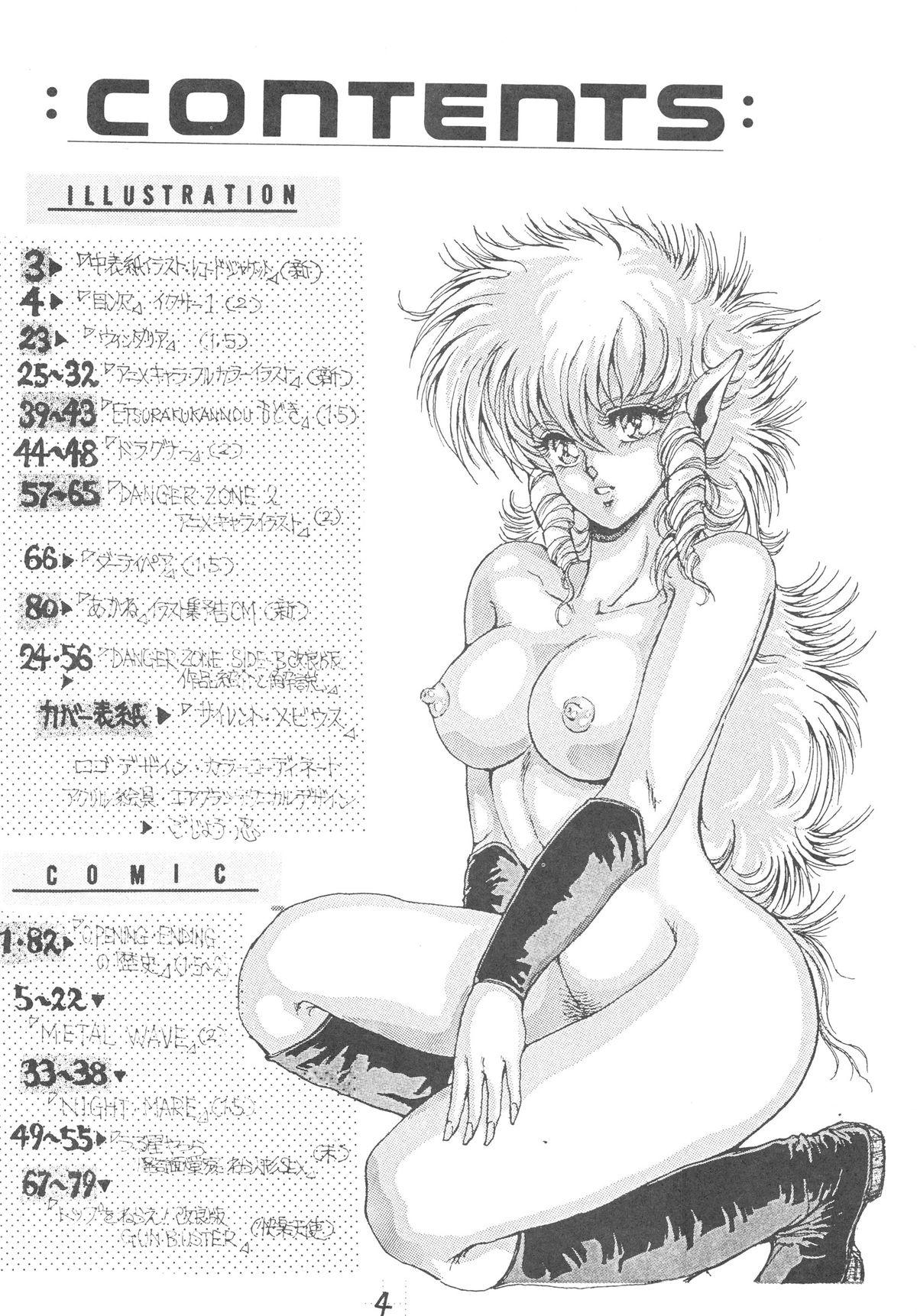DANGER ZONE SIDE B Kairyouban 4