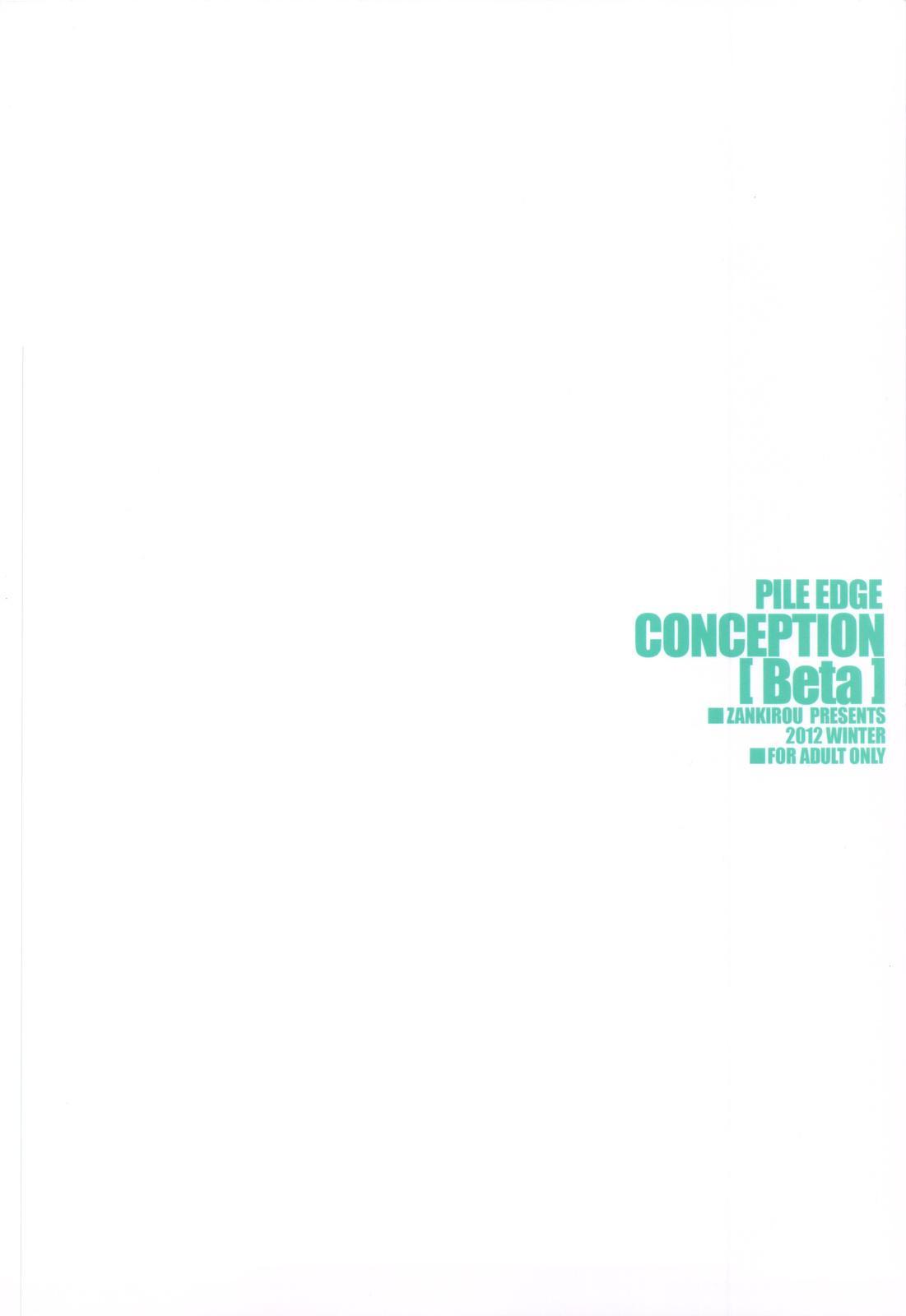 PILEDGE CONCEPTION 31