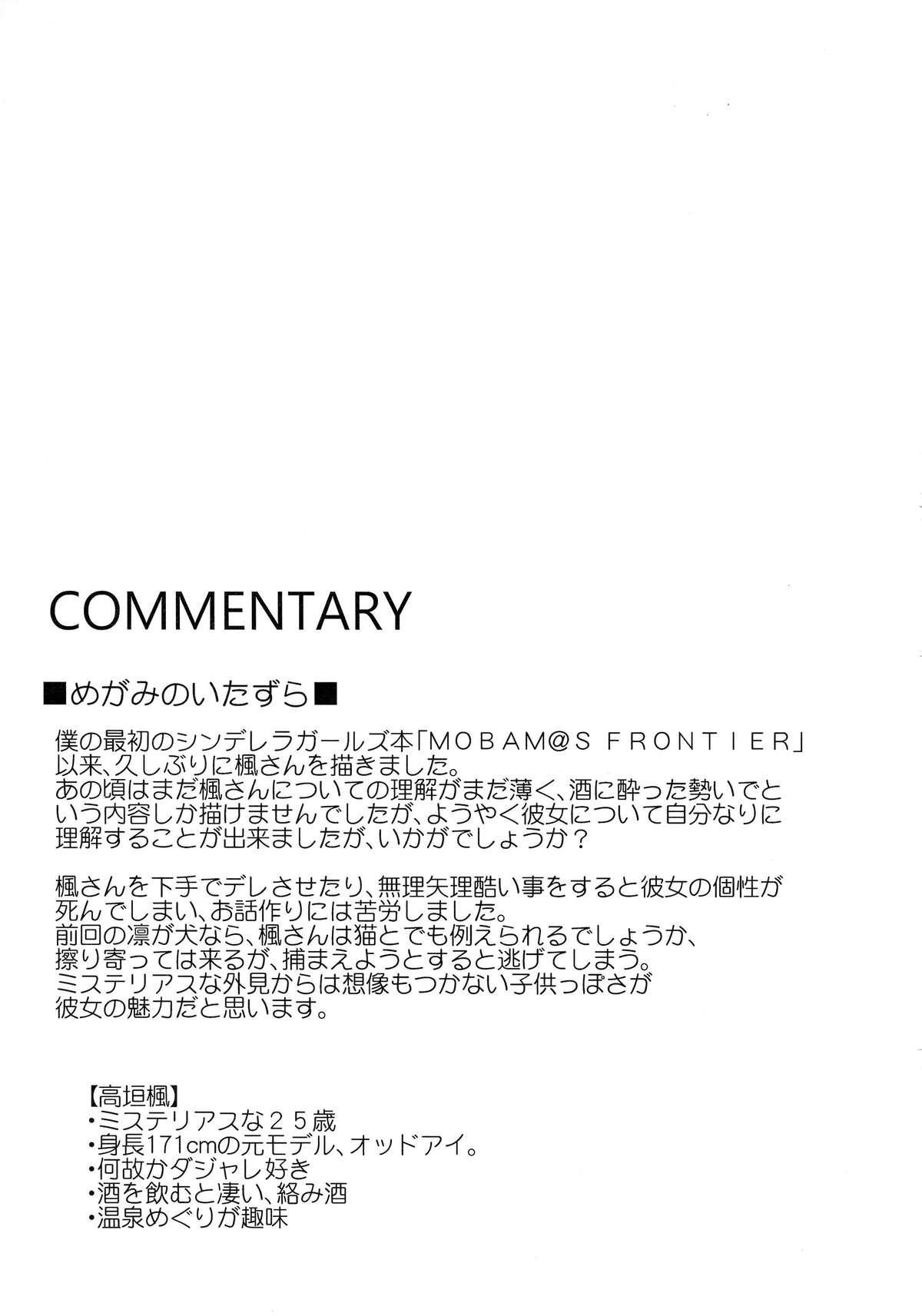 CINDERELLA ECSTASY Megami no Tawamure 24