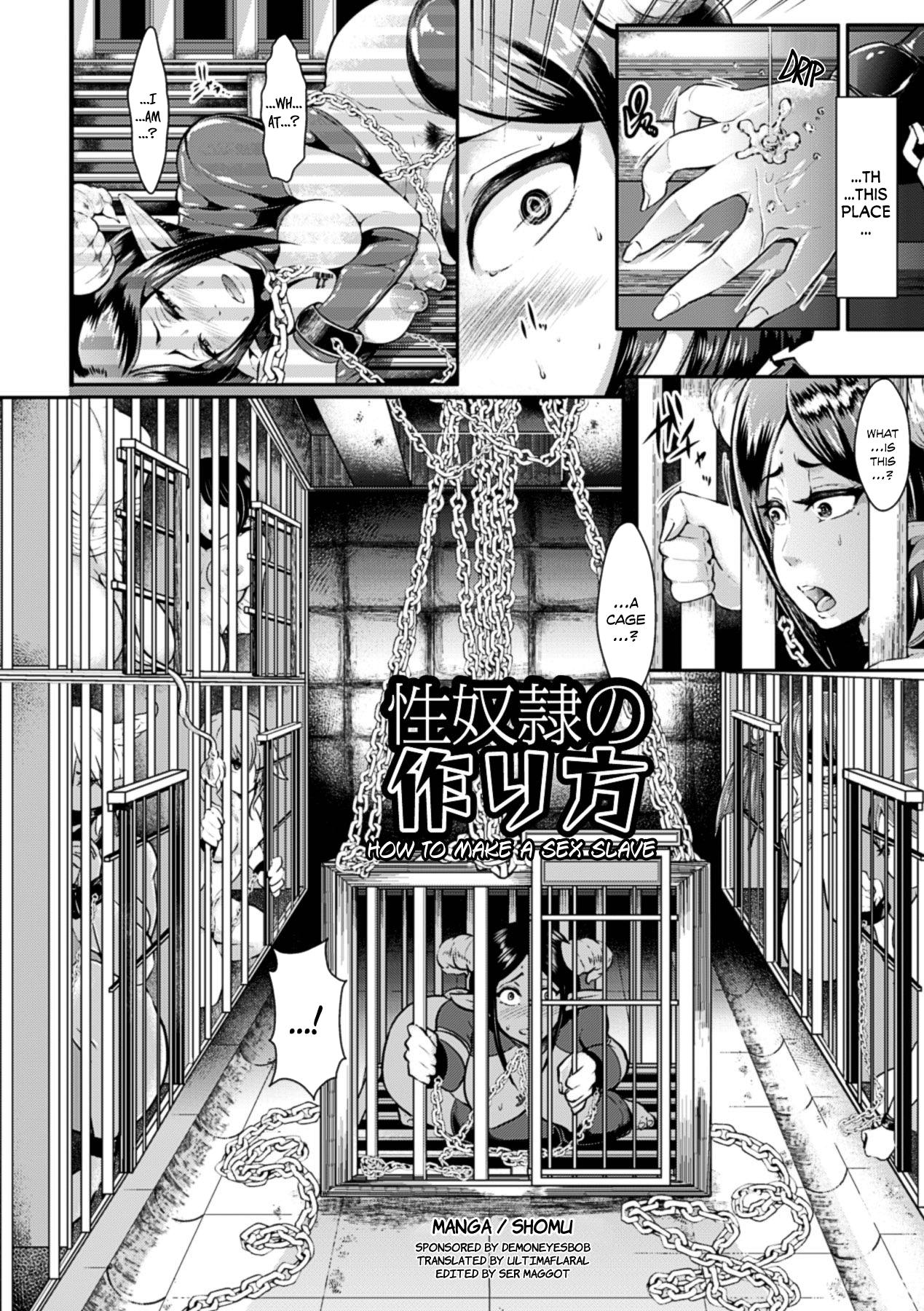 Seidorei no Tsukurikata | How to Make a Sex Slave 0