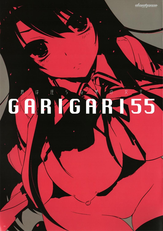 GARIGARI 55 1