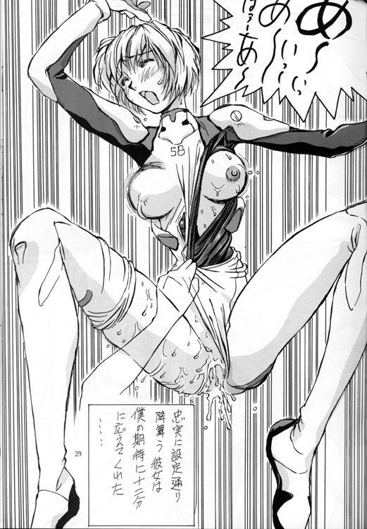 Ayanami Rei Hen 29