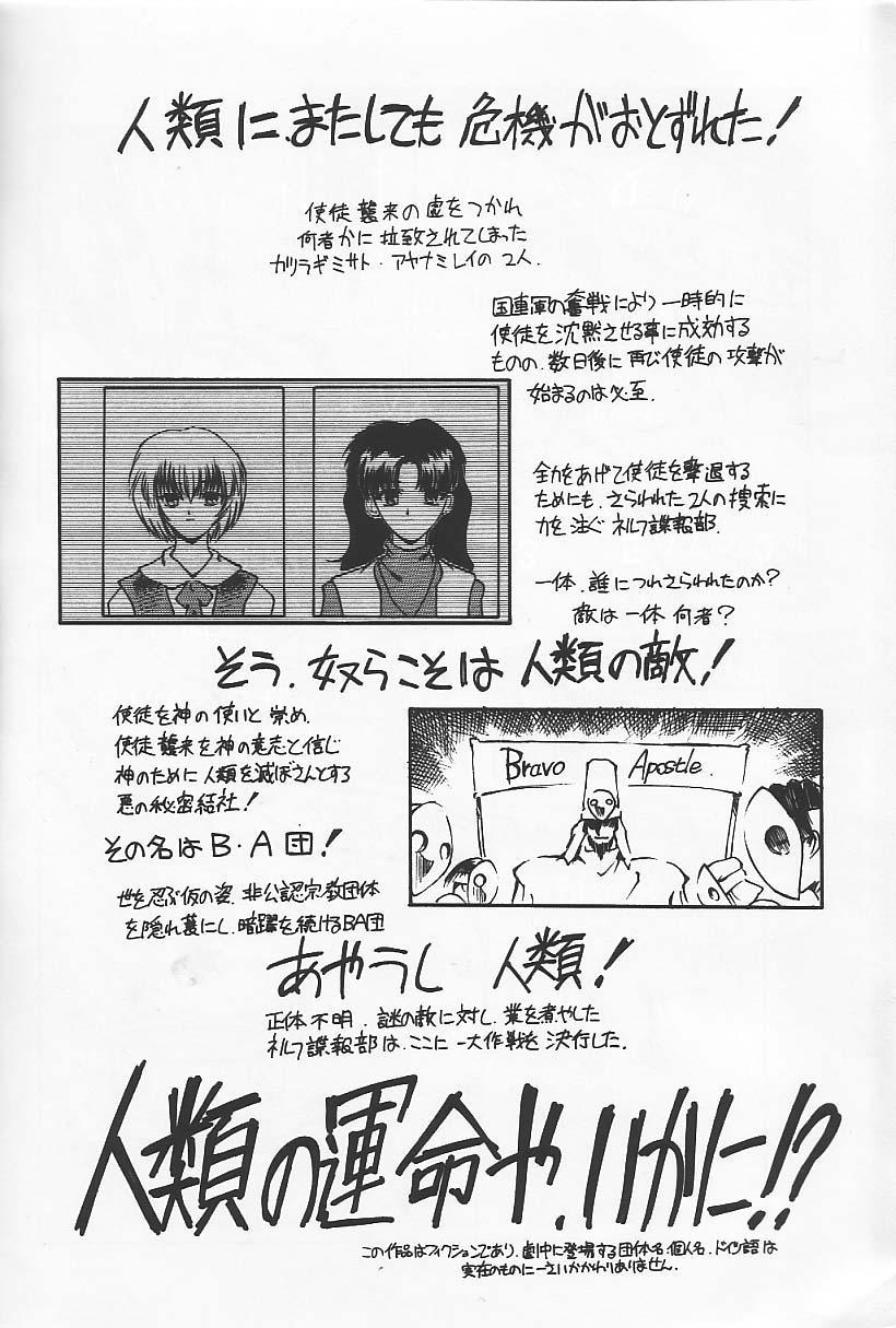 "Ryokan Hanamura ""Beni Kujaku no Ma"" 4"