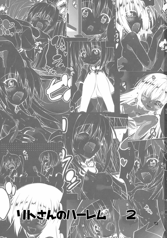 Rito-san no Harem Seikatsu 2 1