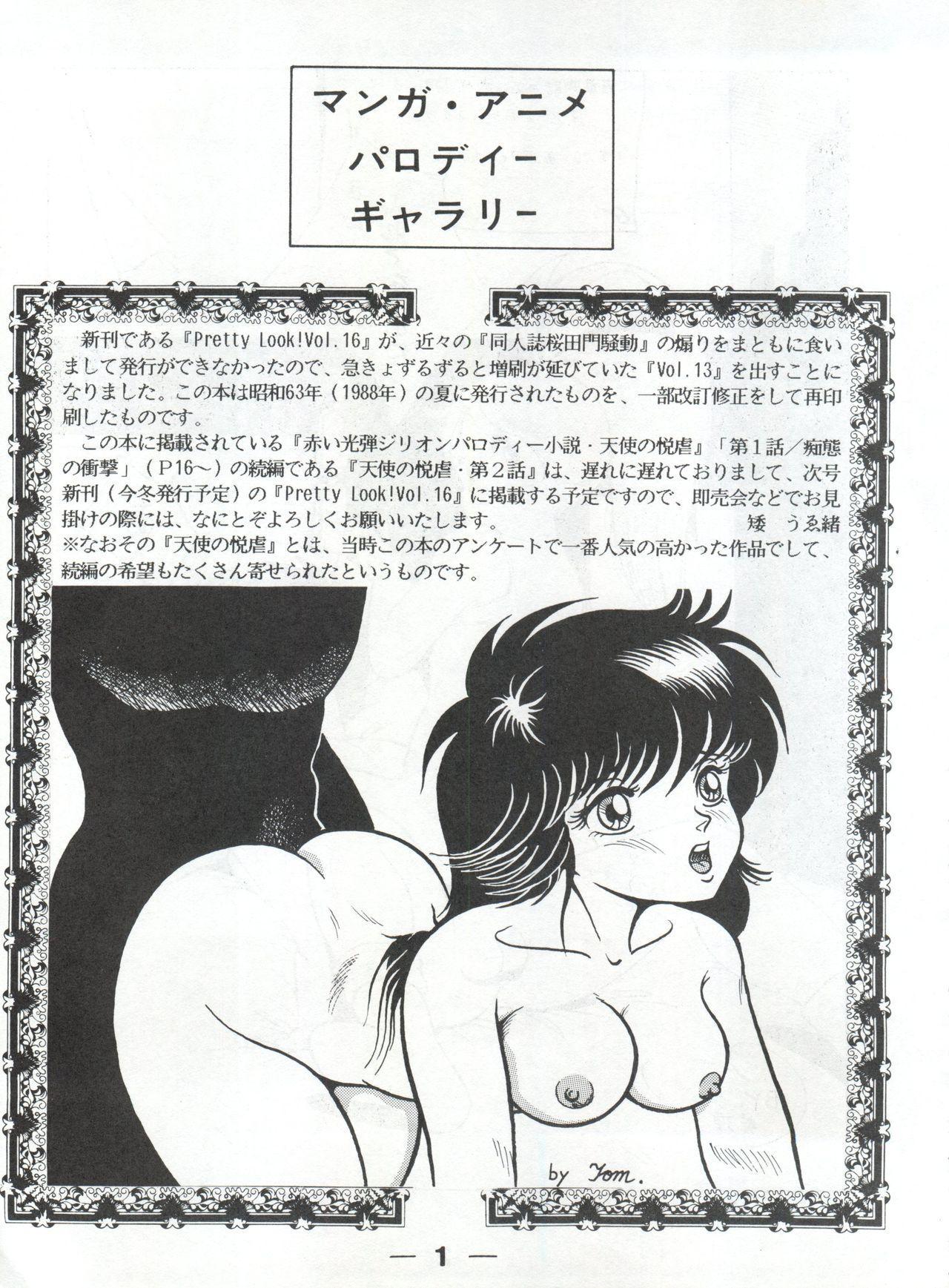 Pretty Look! Vol.13 Kai 44