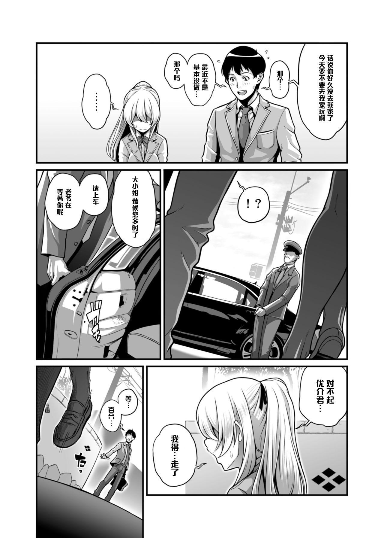 Daraku Reijou Hakoiri Ojou-sama Netorare Choukyou Kiroku 2