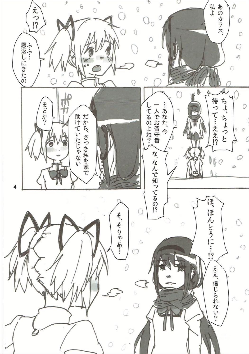 Homu no Ongaeshi 4