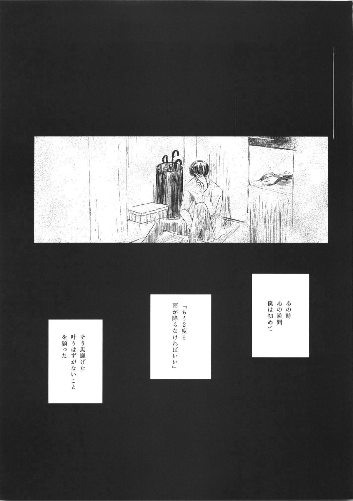 Seiten 2
