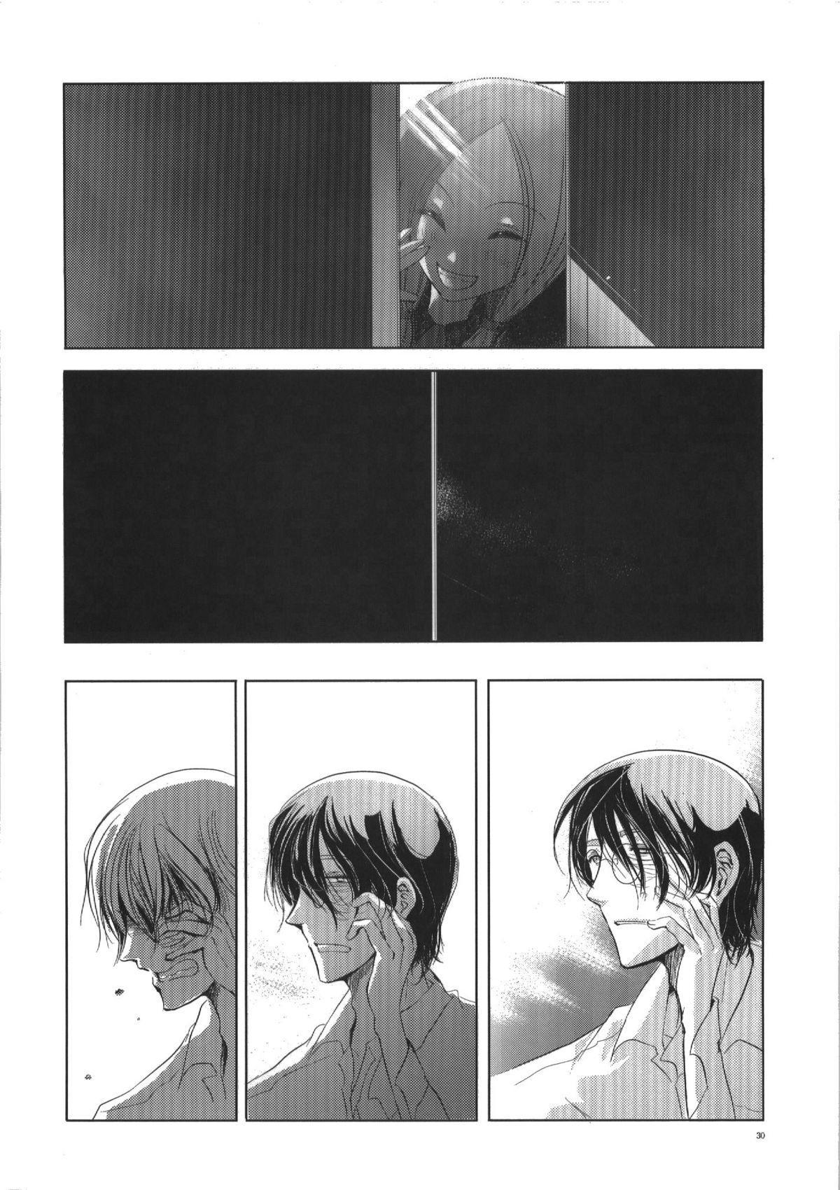 Seiten 29