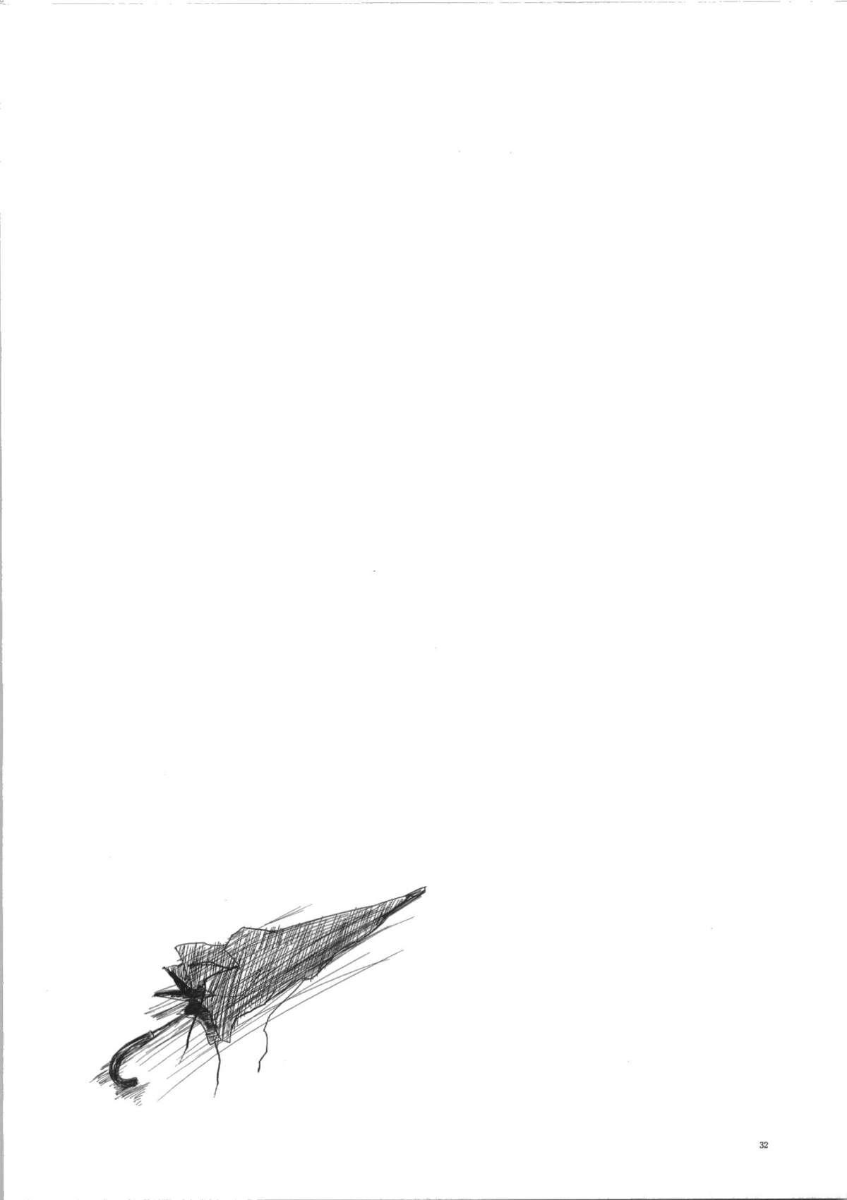 Seiten 31