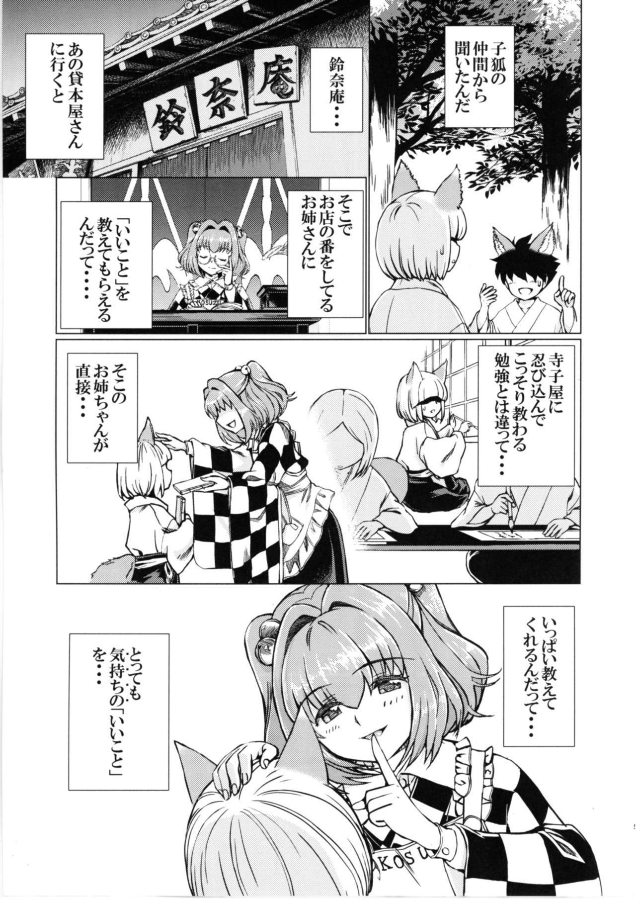 Ochita Tsubaki Sono Ni Hinoenma Hiroku Gaiden 3