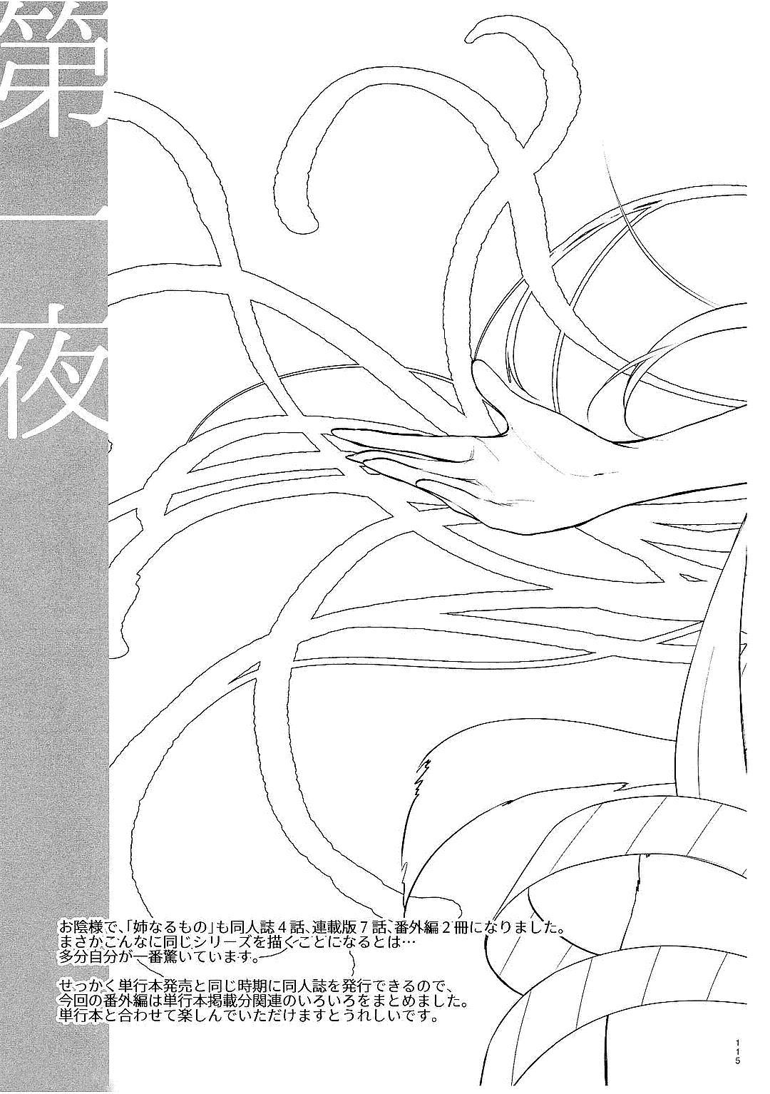 Ane Naru Mono Zenshuu 1 112