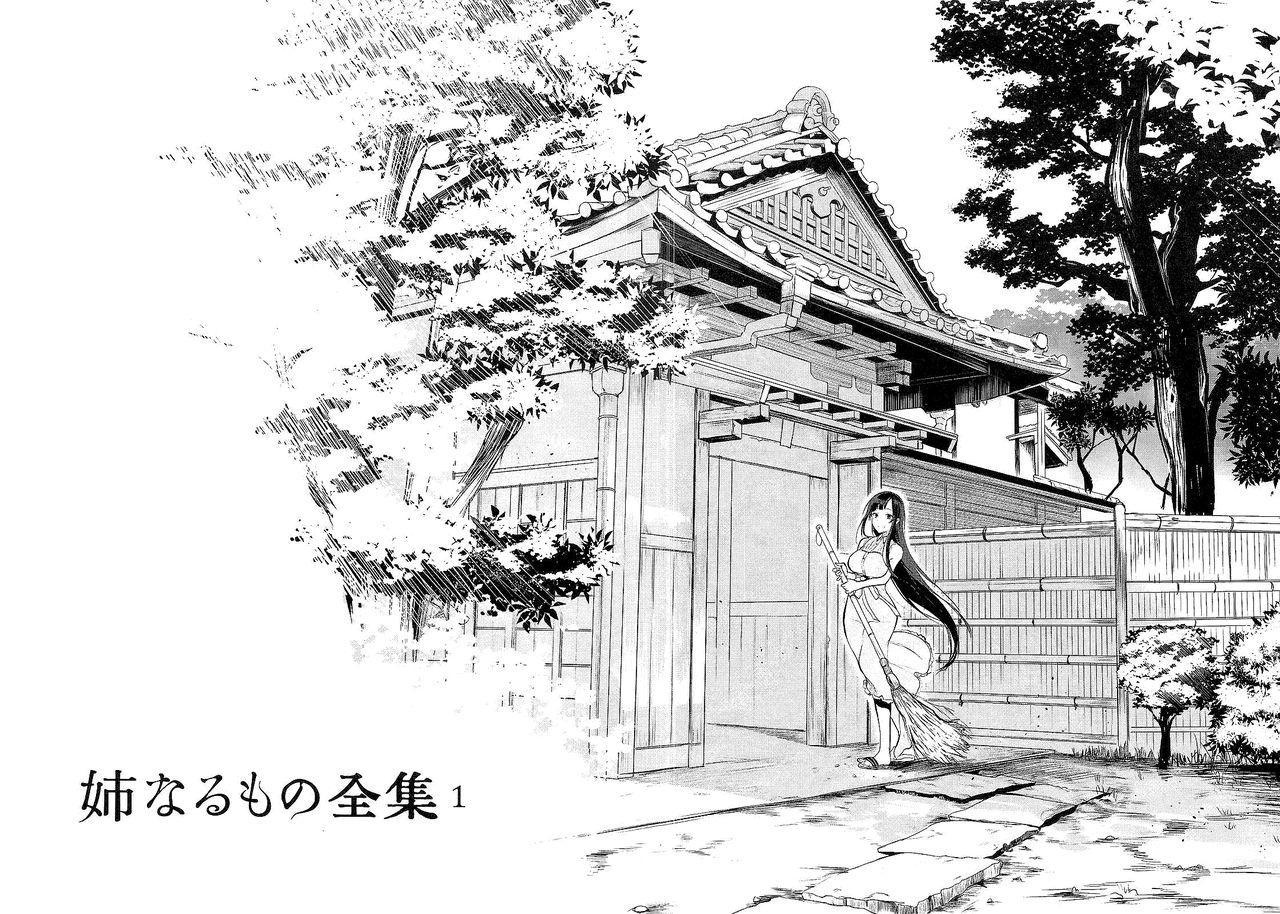 Ane Naru Mono Zenshuu 1 2