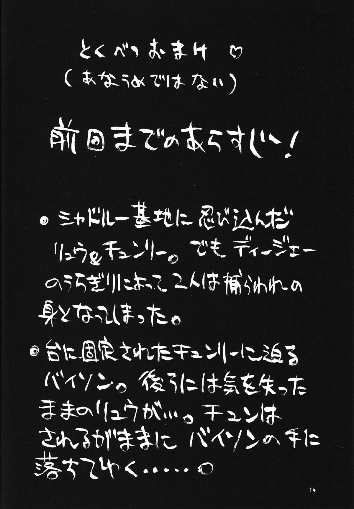 Kakutou Complete Gekan 14