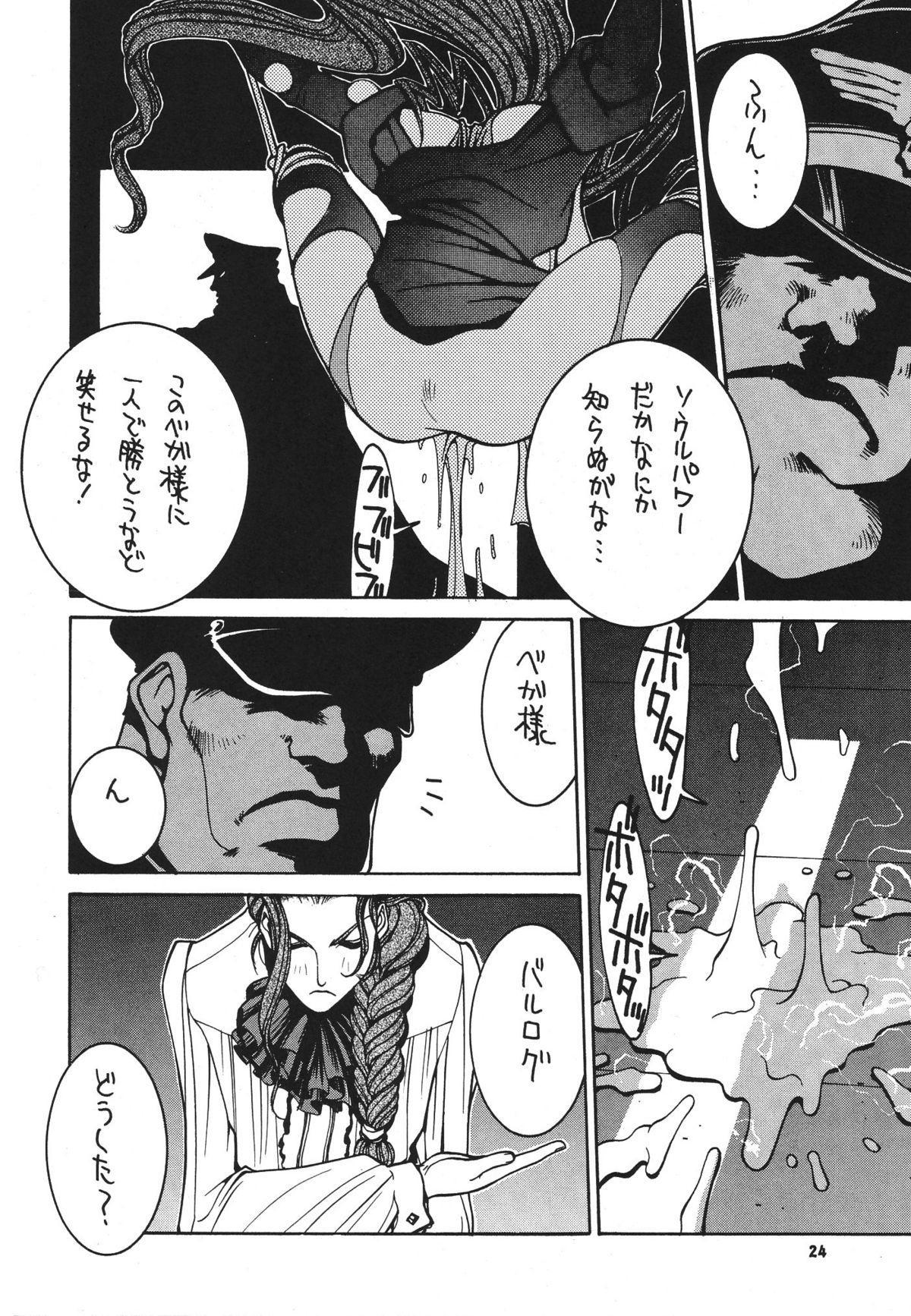 Kakutou Complete Gekan 24