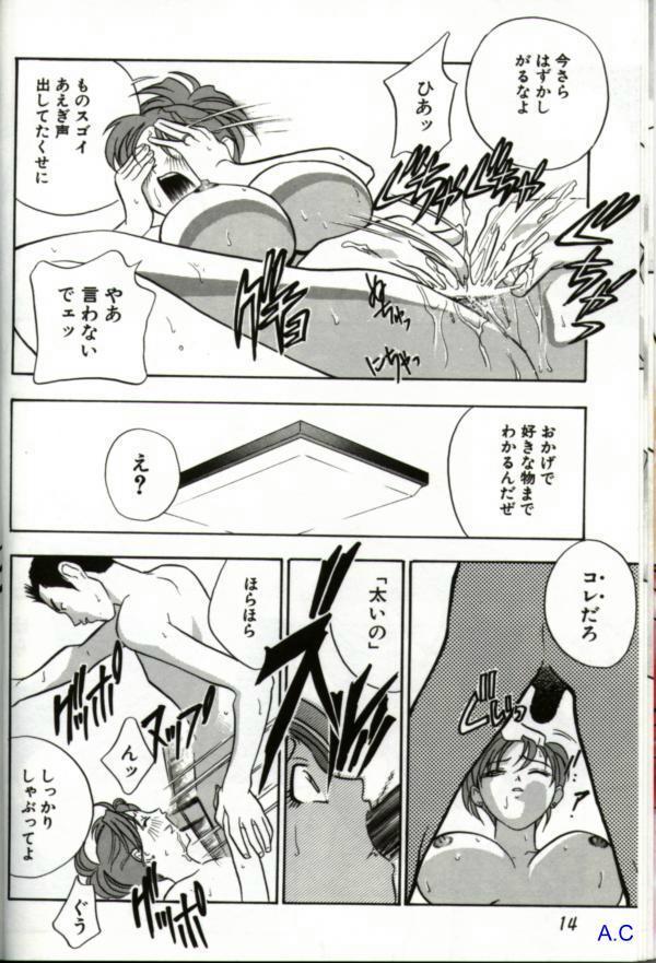 Hitozuma Special 12
