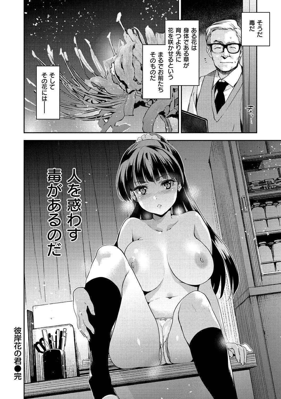 [Inue Shinsuke] Hime-sama Otoshi - Fallen Princesses [Digital] 158