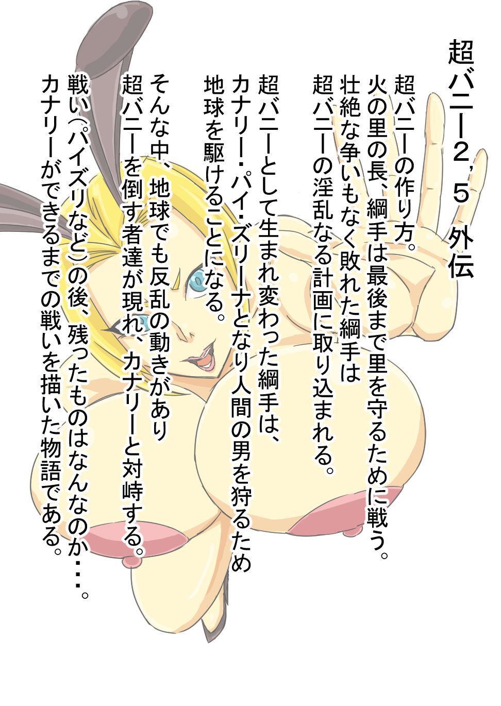 Super Bunny Versus 3 1