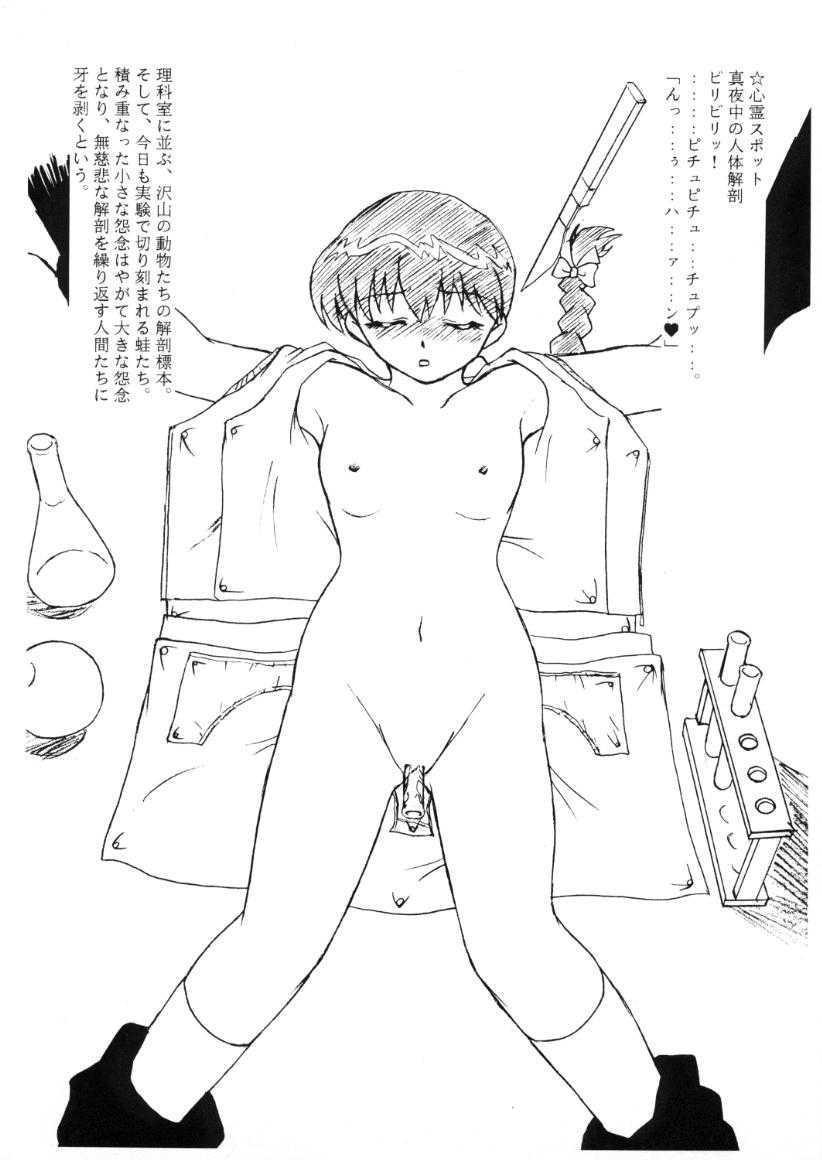 Sexy Sexy Shinrei Shashinshuu 4