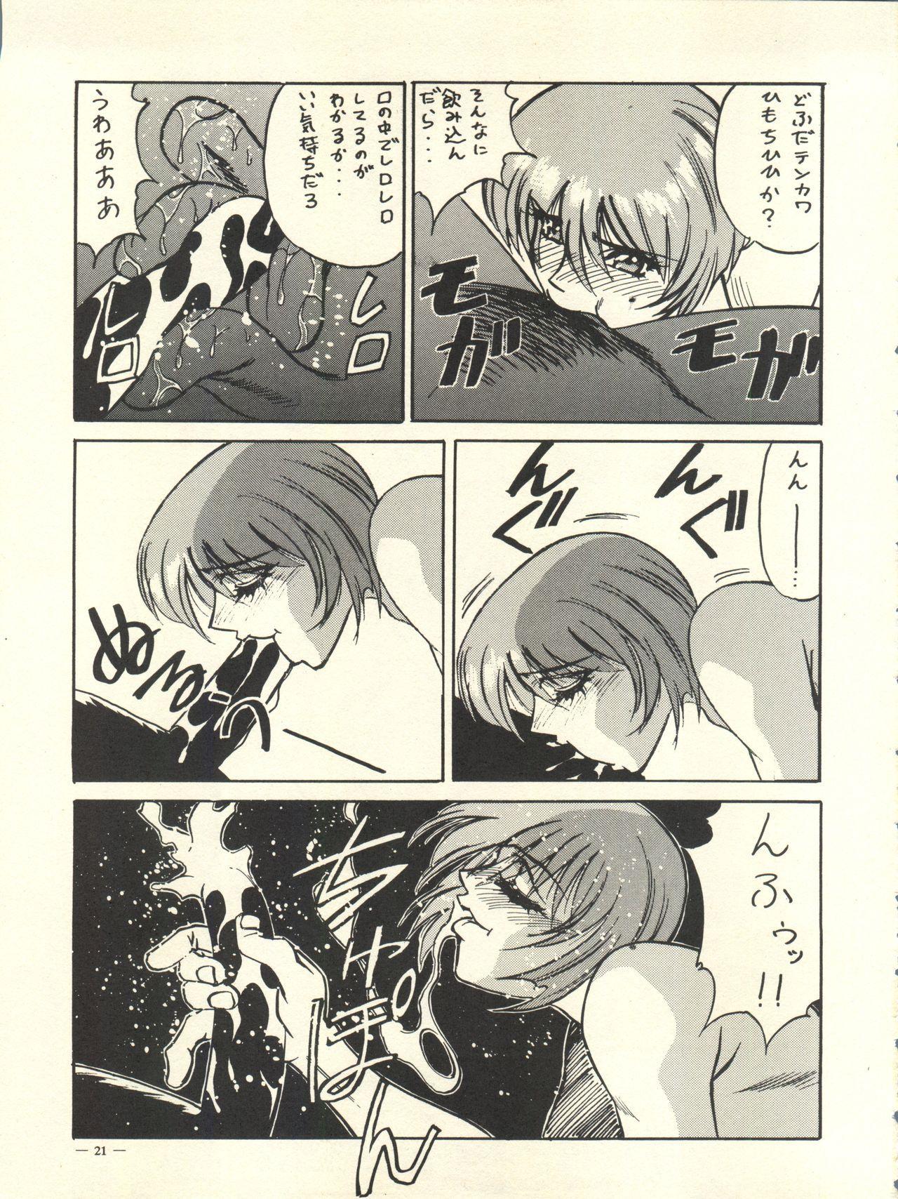 Meirei Denpa Rinne Tenshou 20