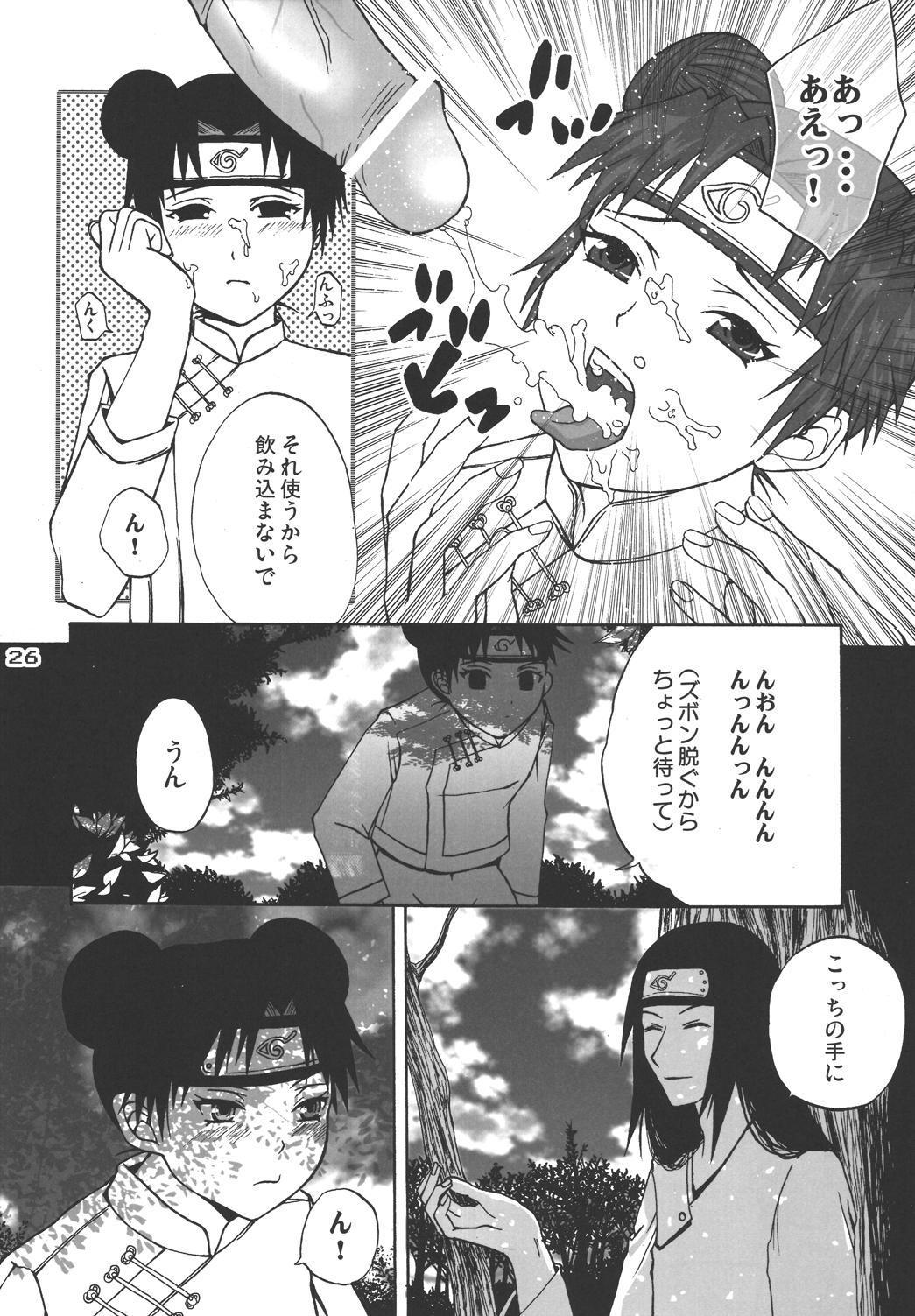 Ninja Girl's Diary 24