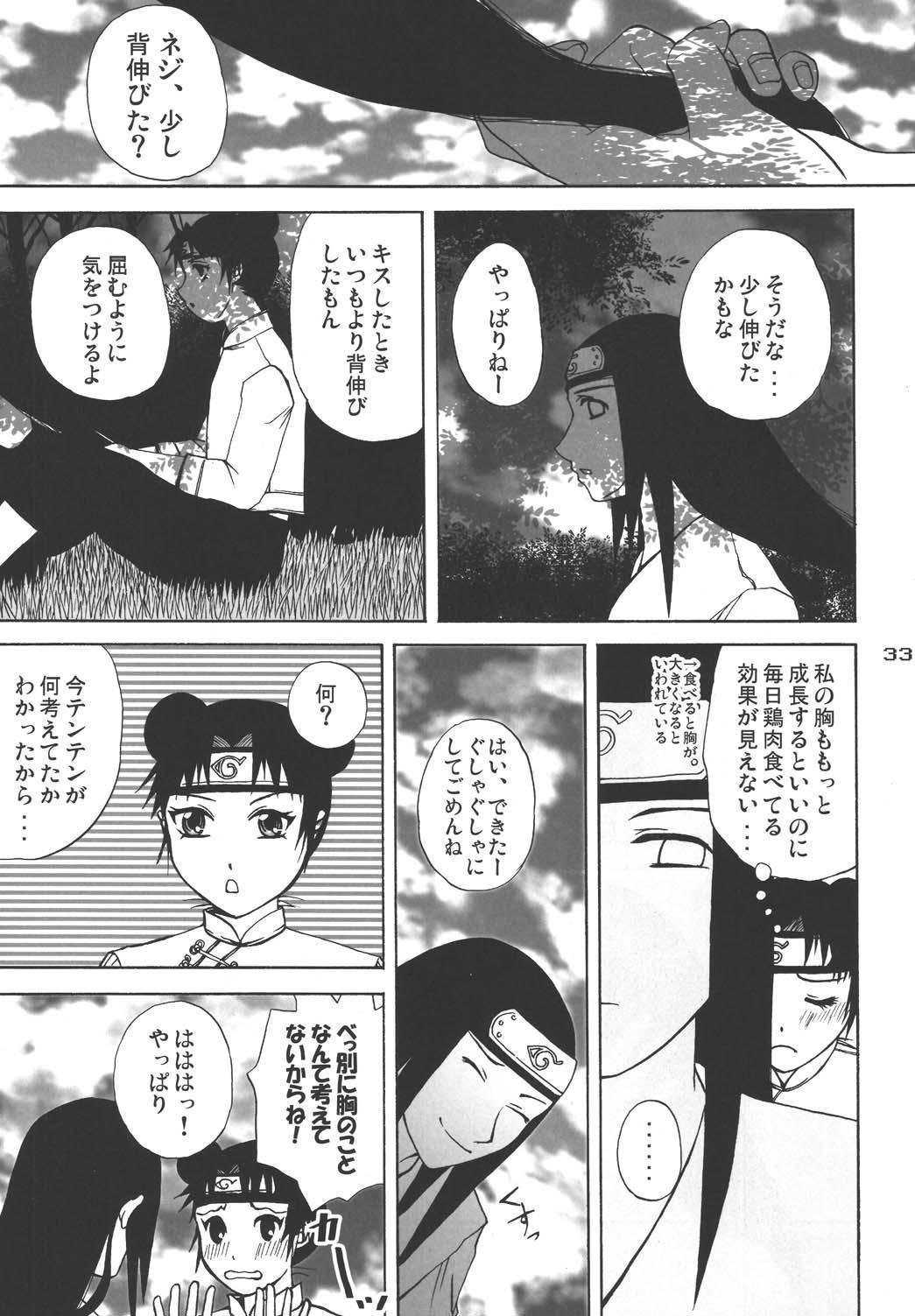 Ninja Girl's Diary 31