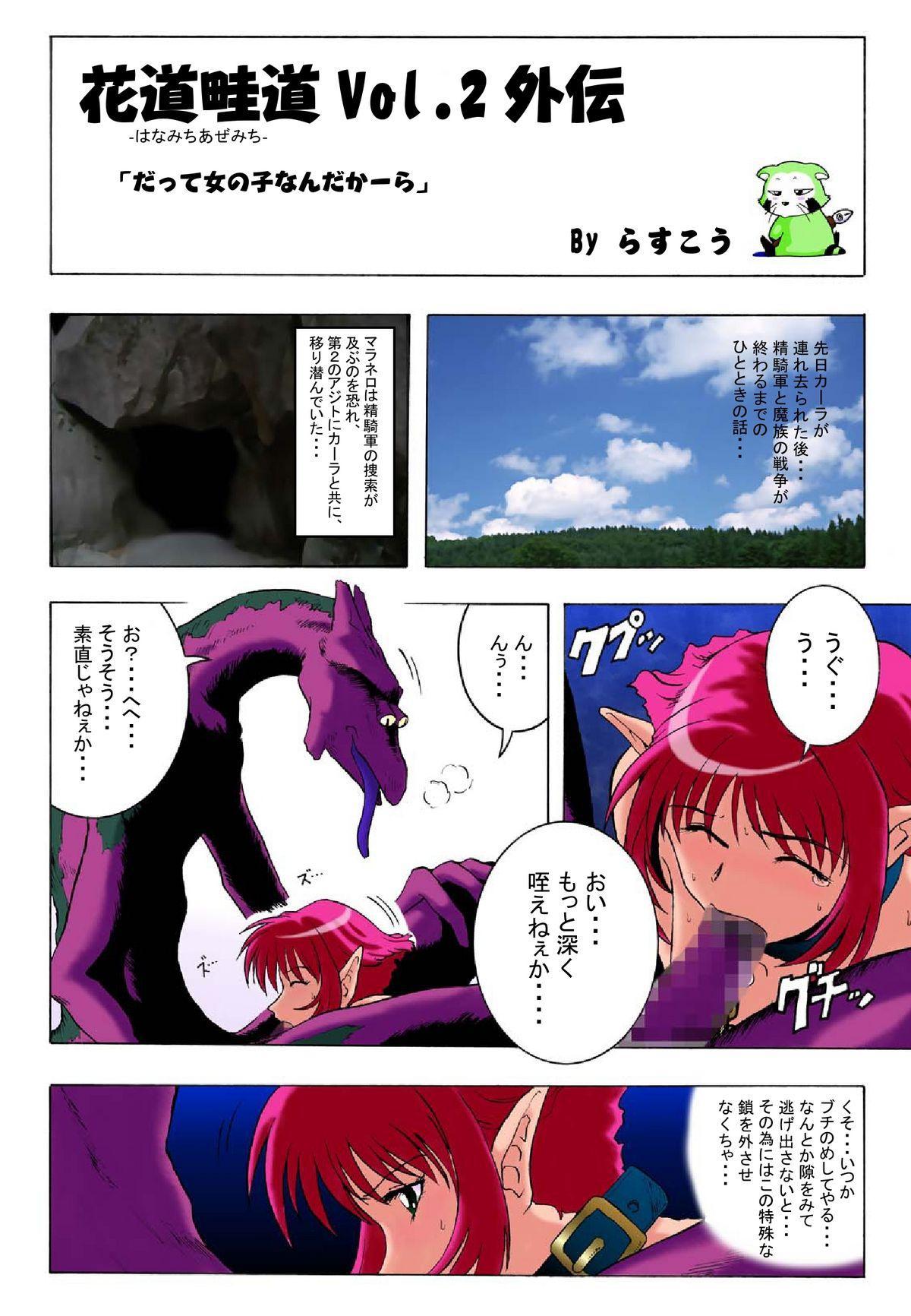 Hanamichi Azemichi Vol. 2 14