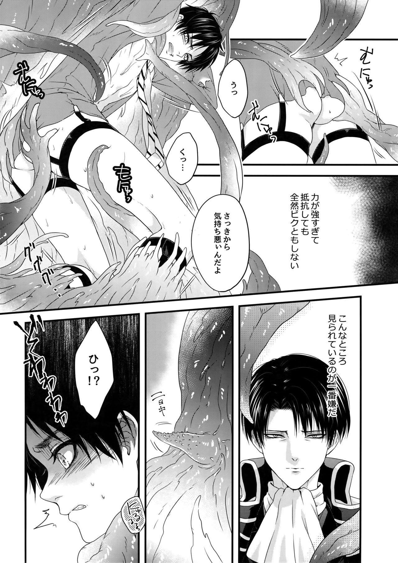 Shinshoku 16