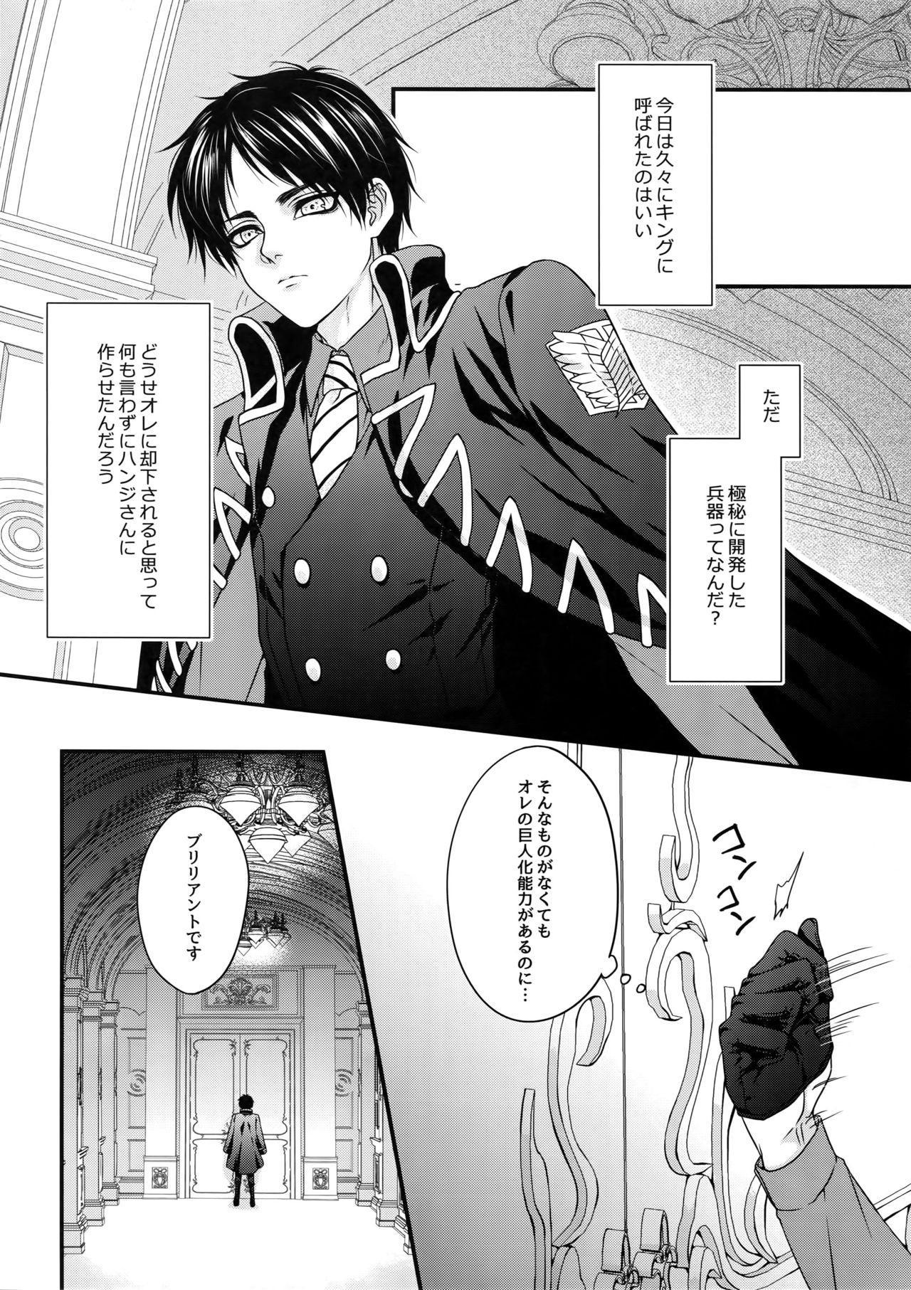 Shinshoku 4