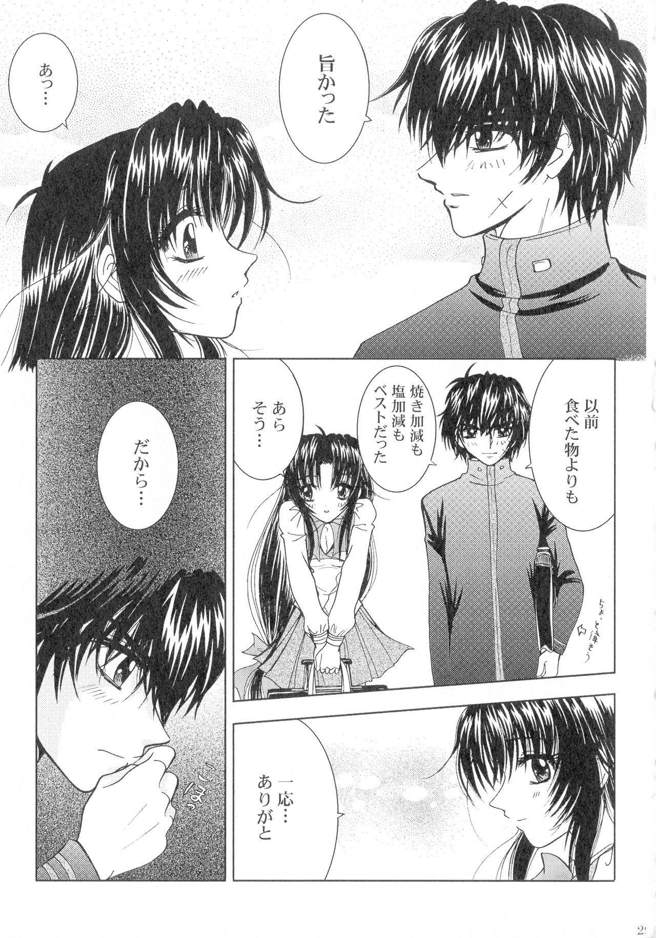 SEXY PANIC Sairokushuu Vol. 4 29