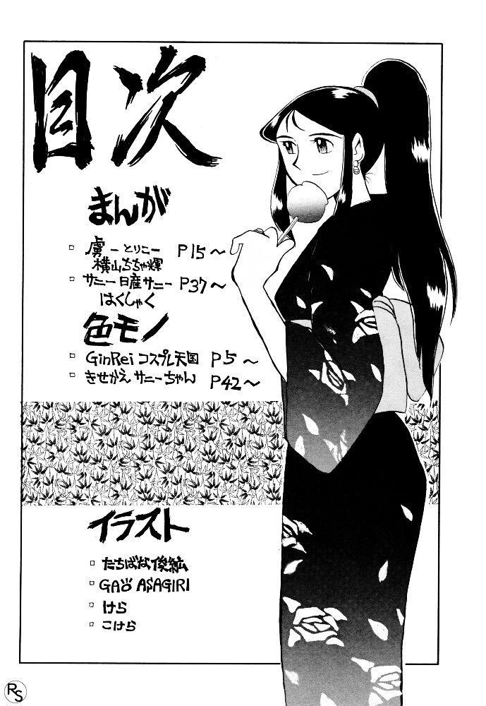 Ginrei Hon VI 2
