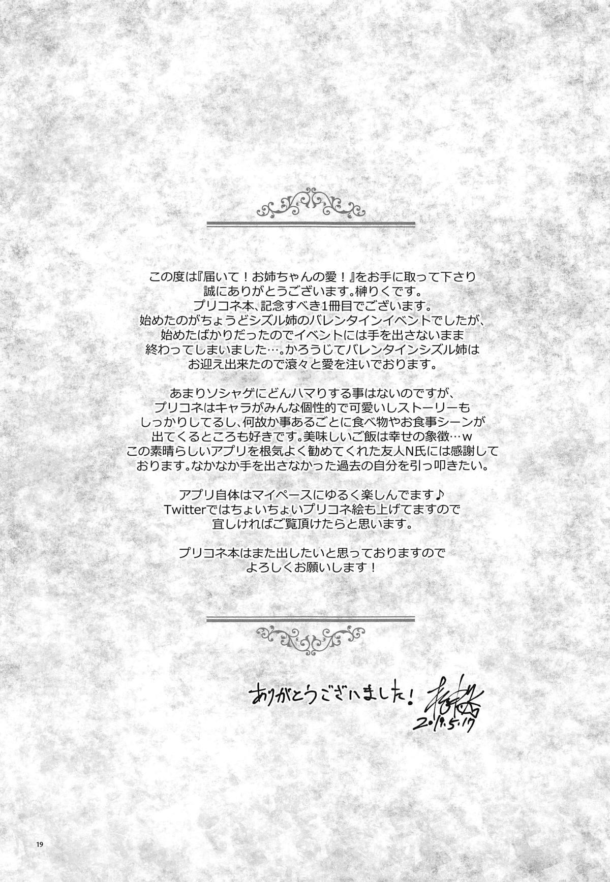 Todoite! Onee-chan no Ai! 17