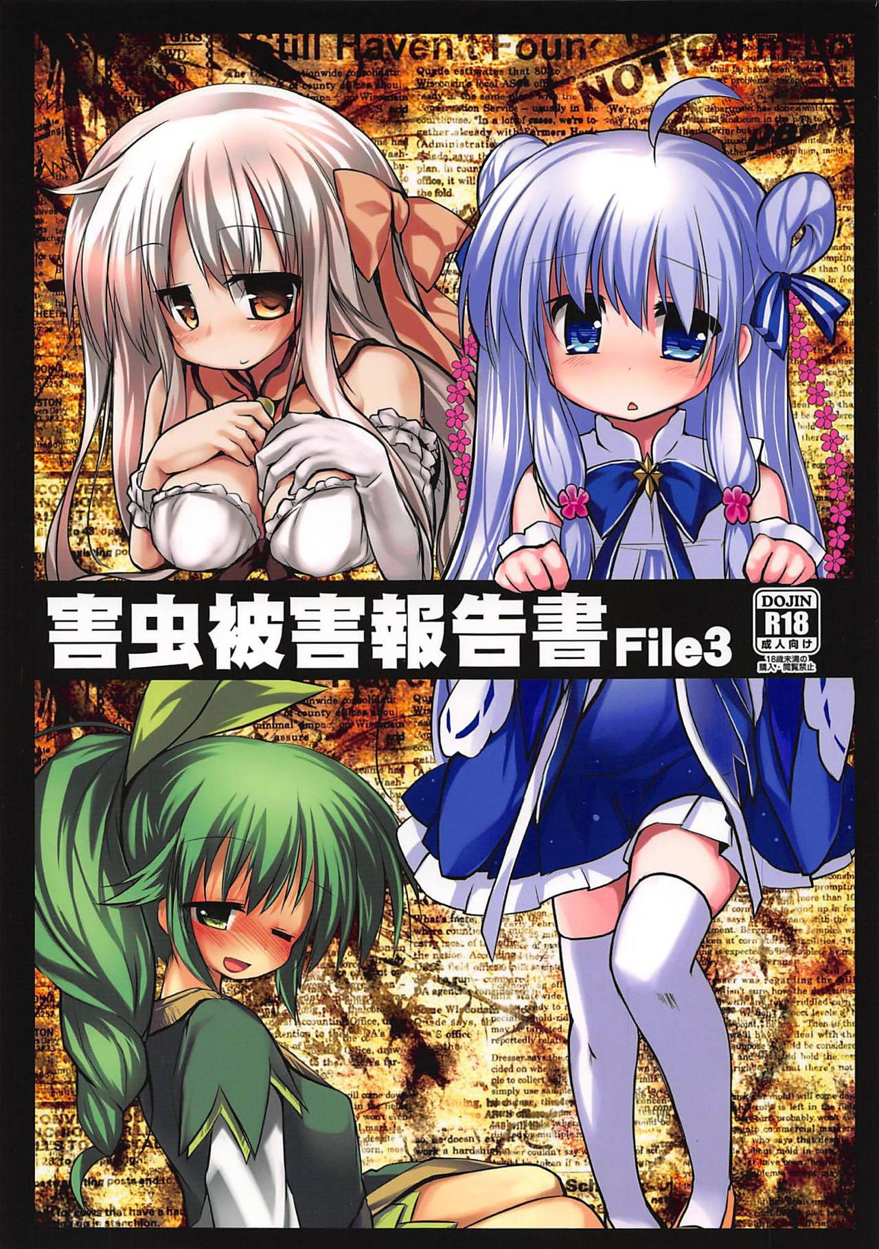 Gaichuu Higai Houkokusho File 3 0