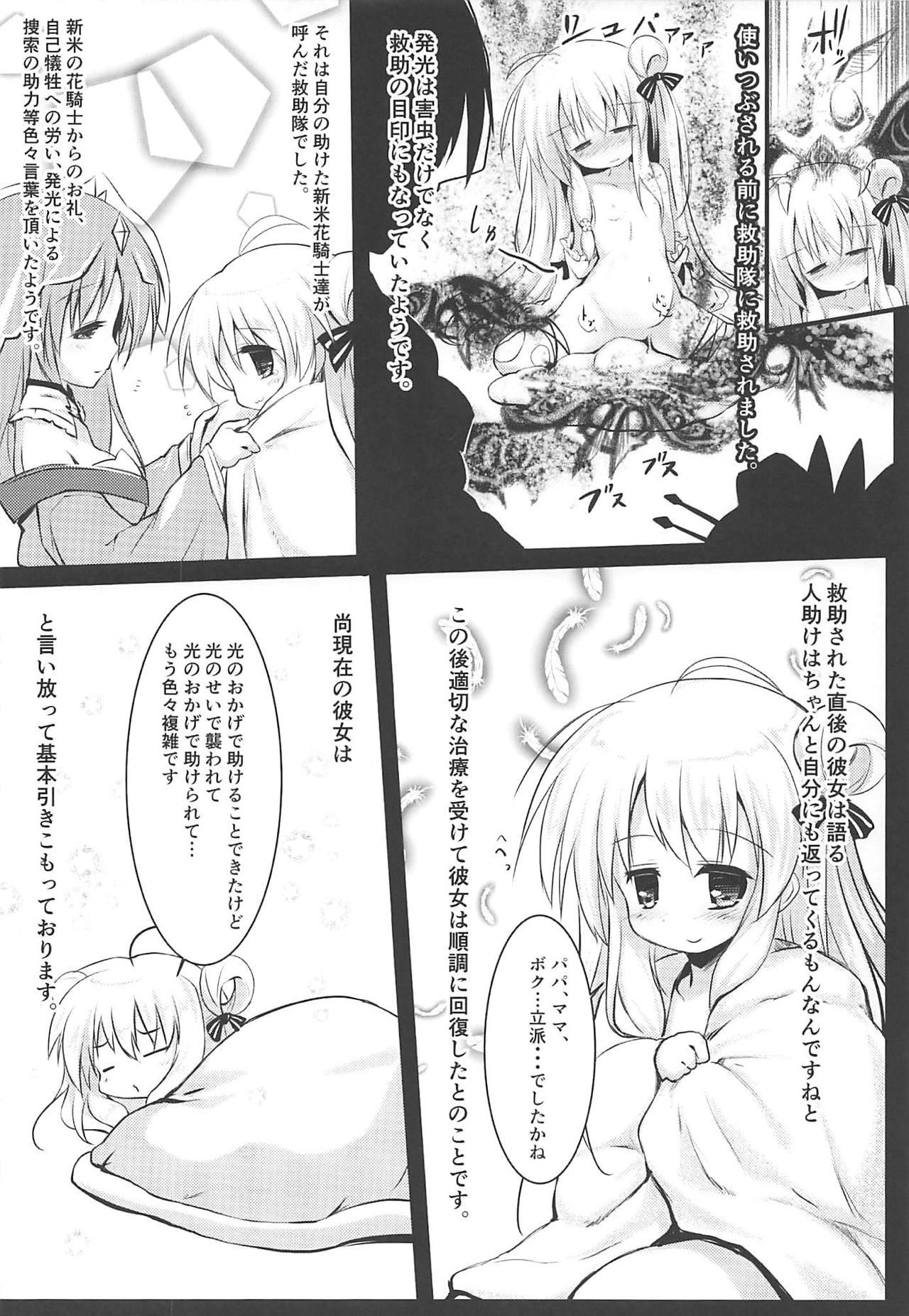 Gaichuu Higai Houkokusho File 3 10
