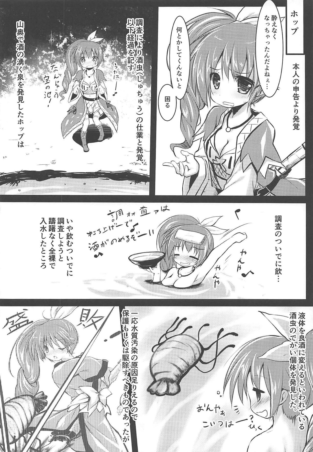 Gaichuu Higai Houkokusho File 3 20