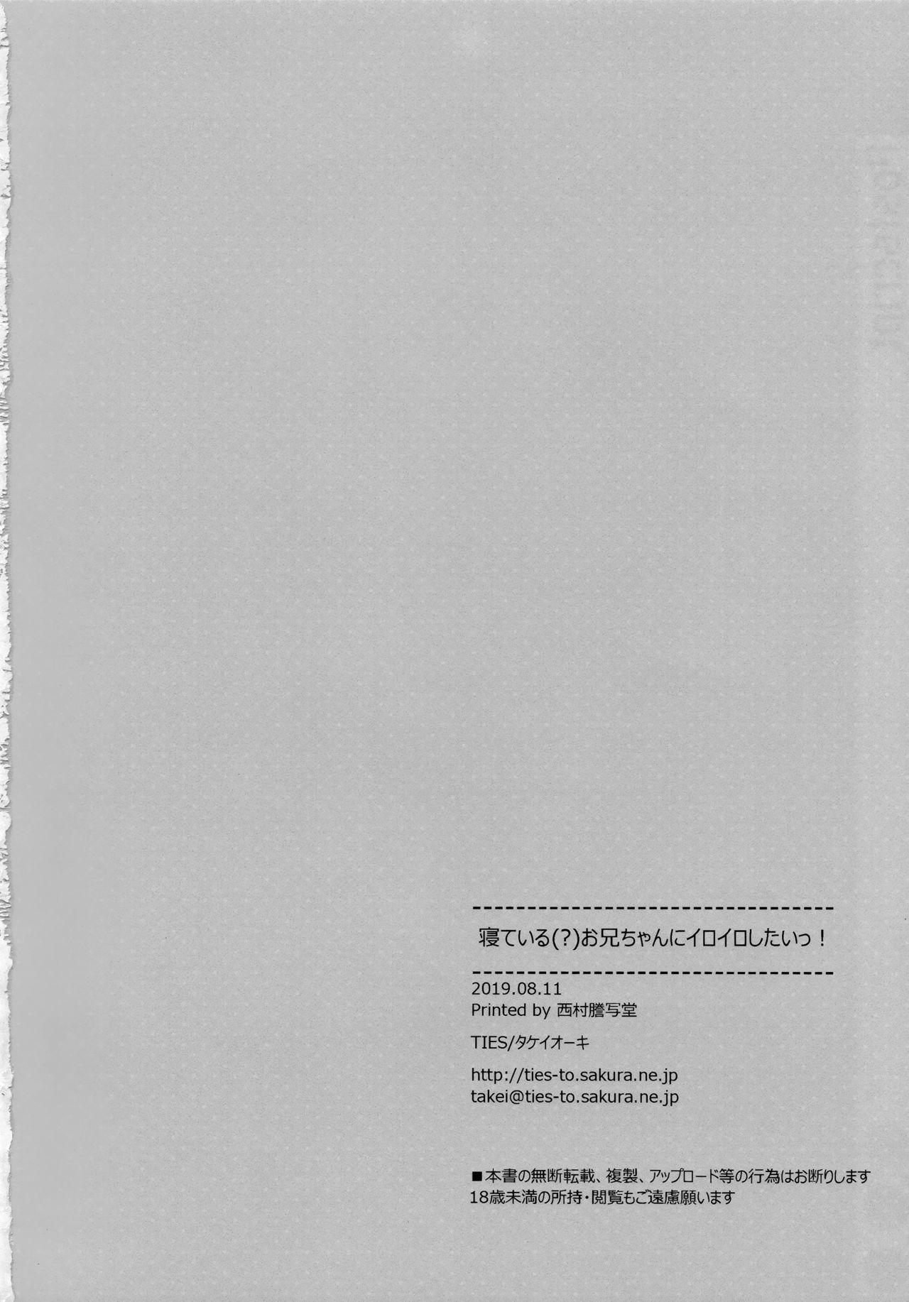 (C96) [TIES (Takei Ooki)] Neteiru (?) Onii-chan ni Iroiro Shitai! 24