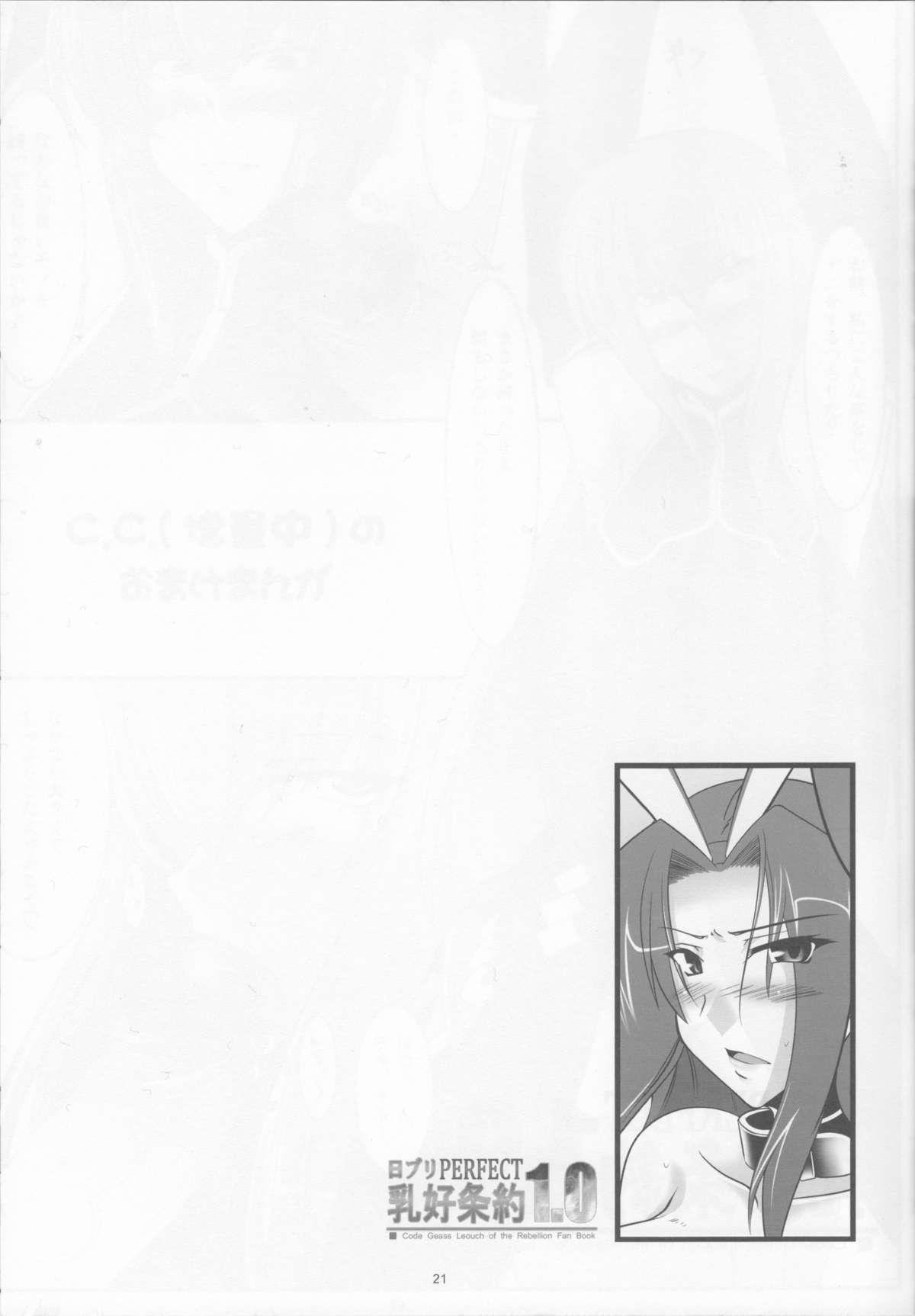 NichiBri PERFECT Nyuukou Jouyaku 1.0 19