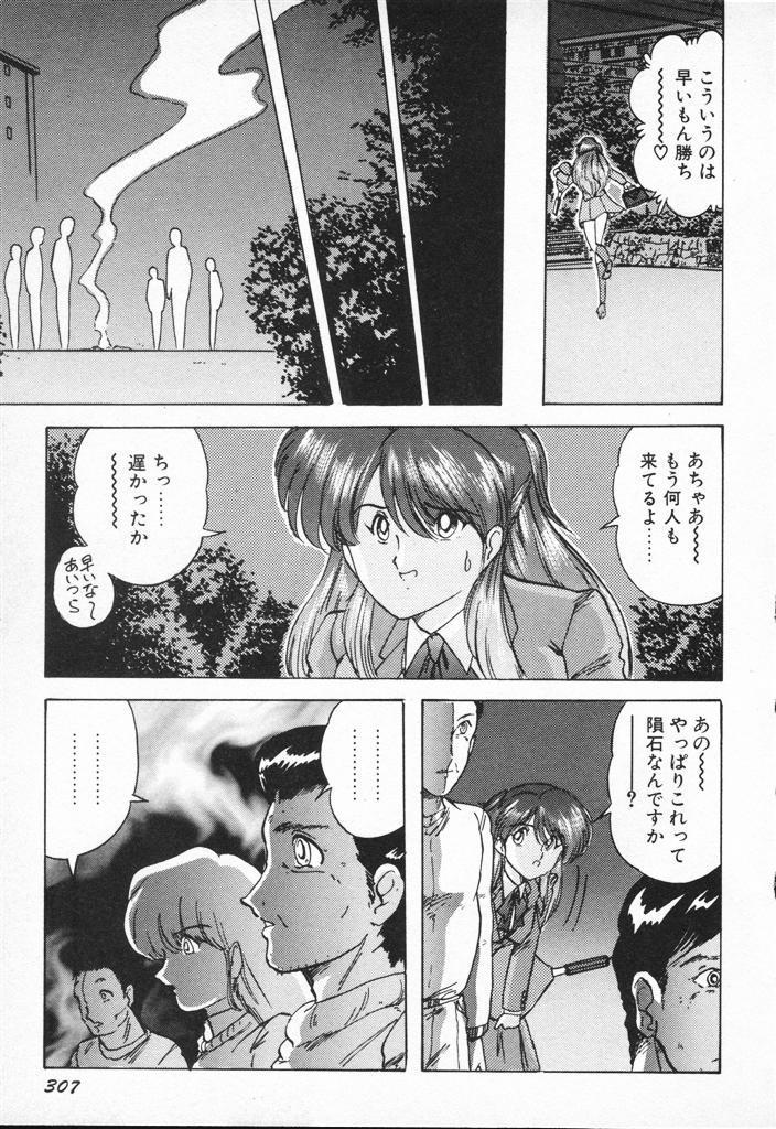 Seirei Tokusou Fairy Saber VS Granbass 306