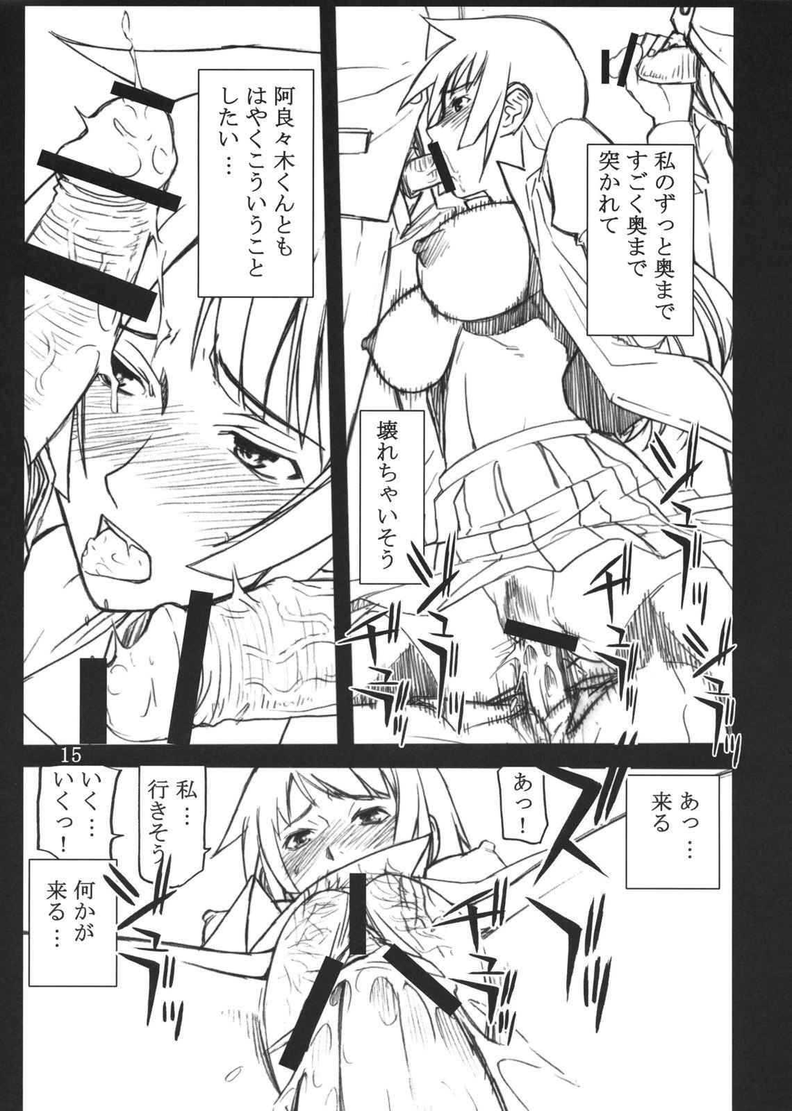 Hitagi Thrust 13
