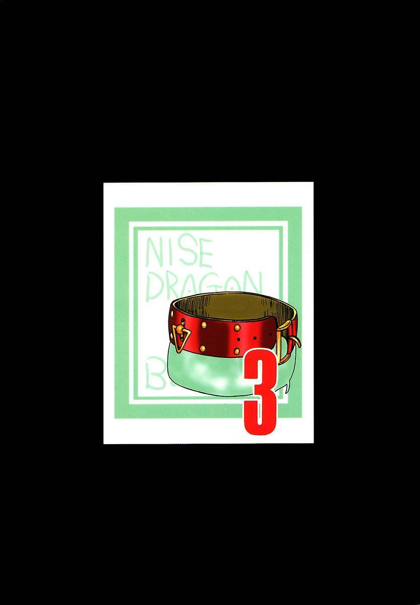 NISE Dragon Blood! 3 39