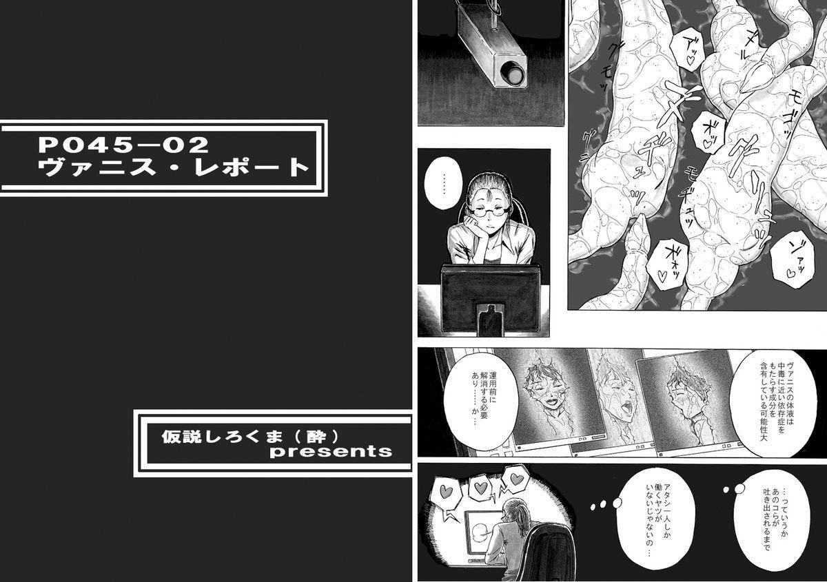 P045-02 Vanis Report 25