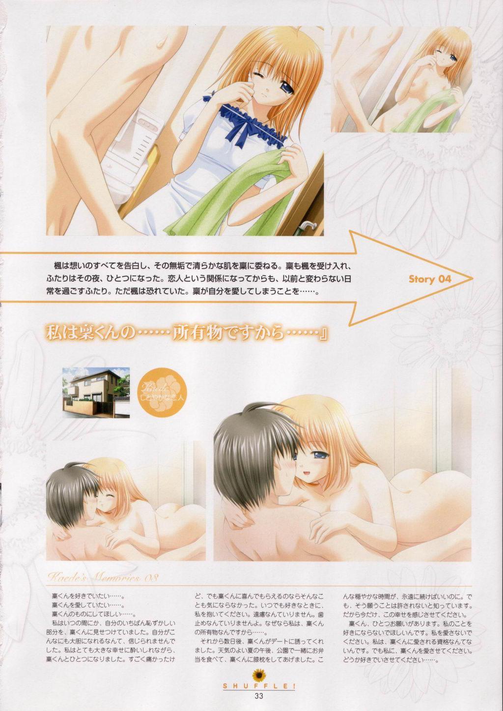 SHUFFLE! Visual Fan Book 33