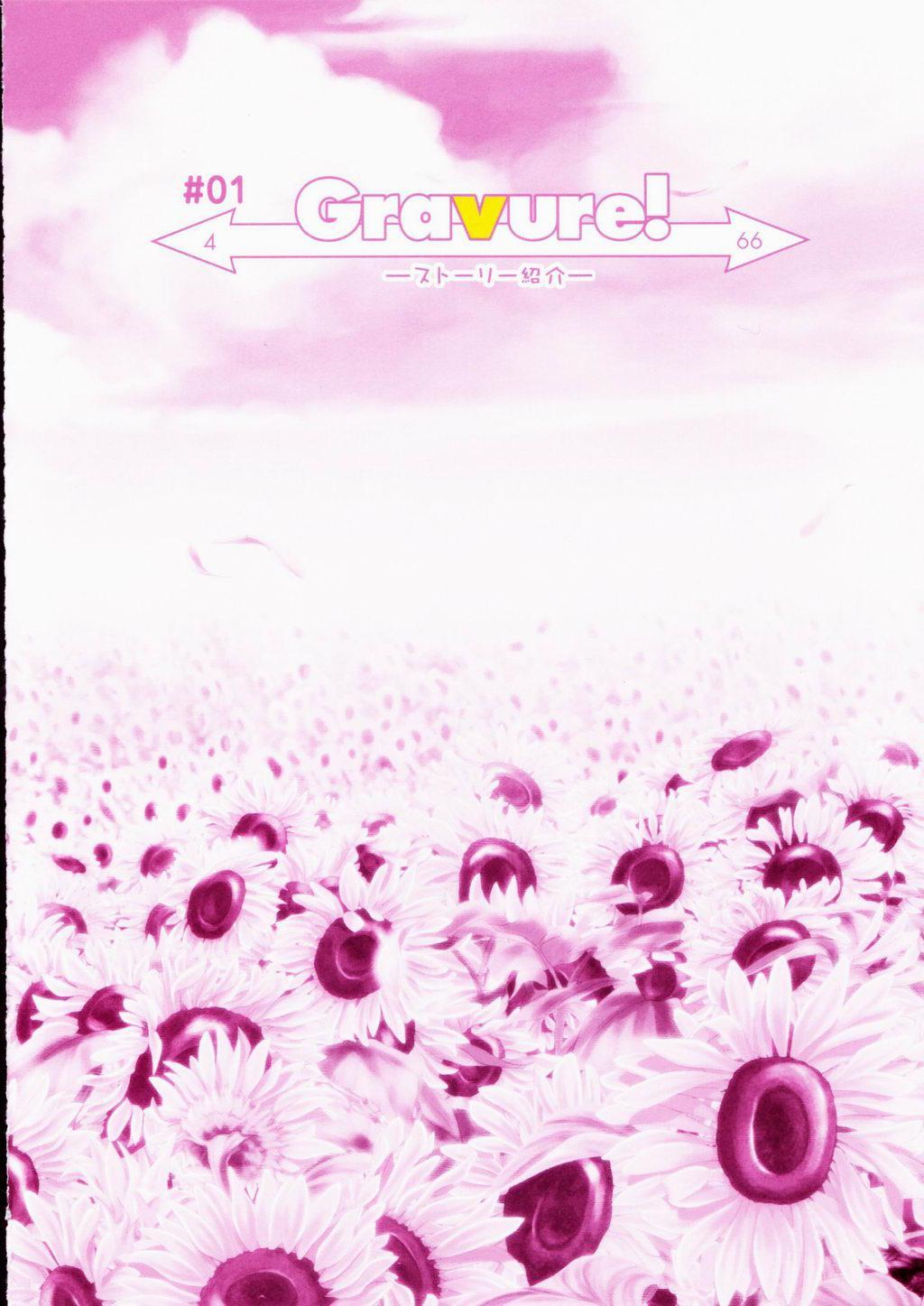 SHUFFLE! Visual Fan Book 3
