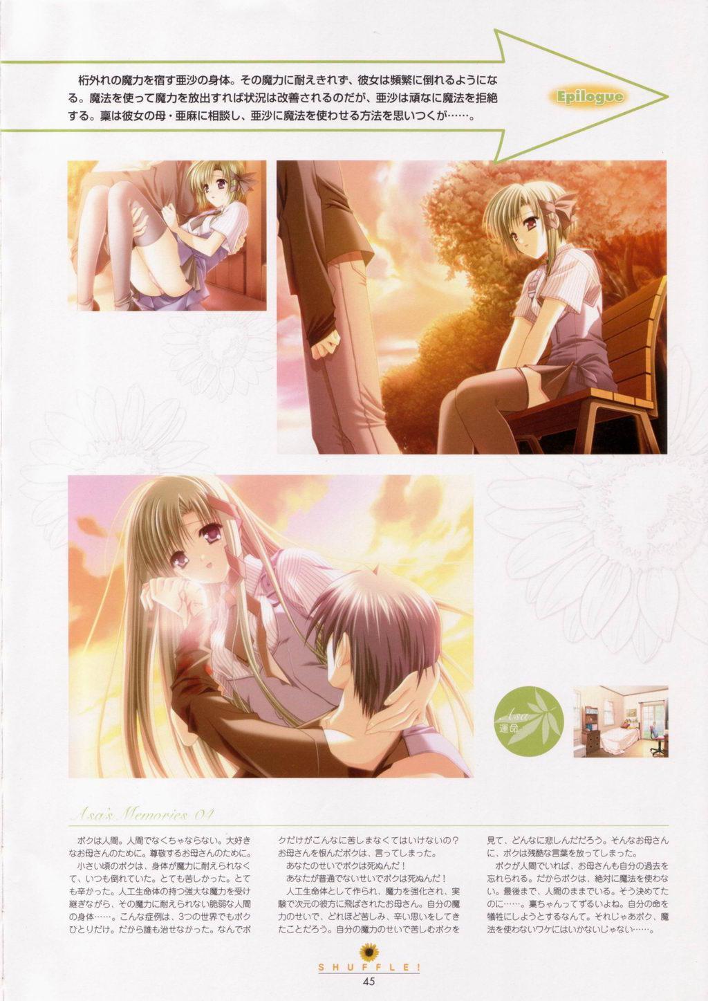 SHUFFLE! Visual Fan Book 45