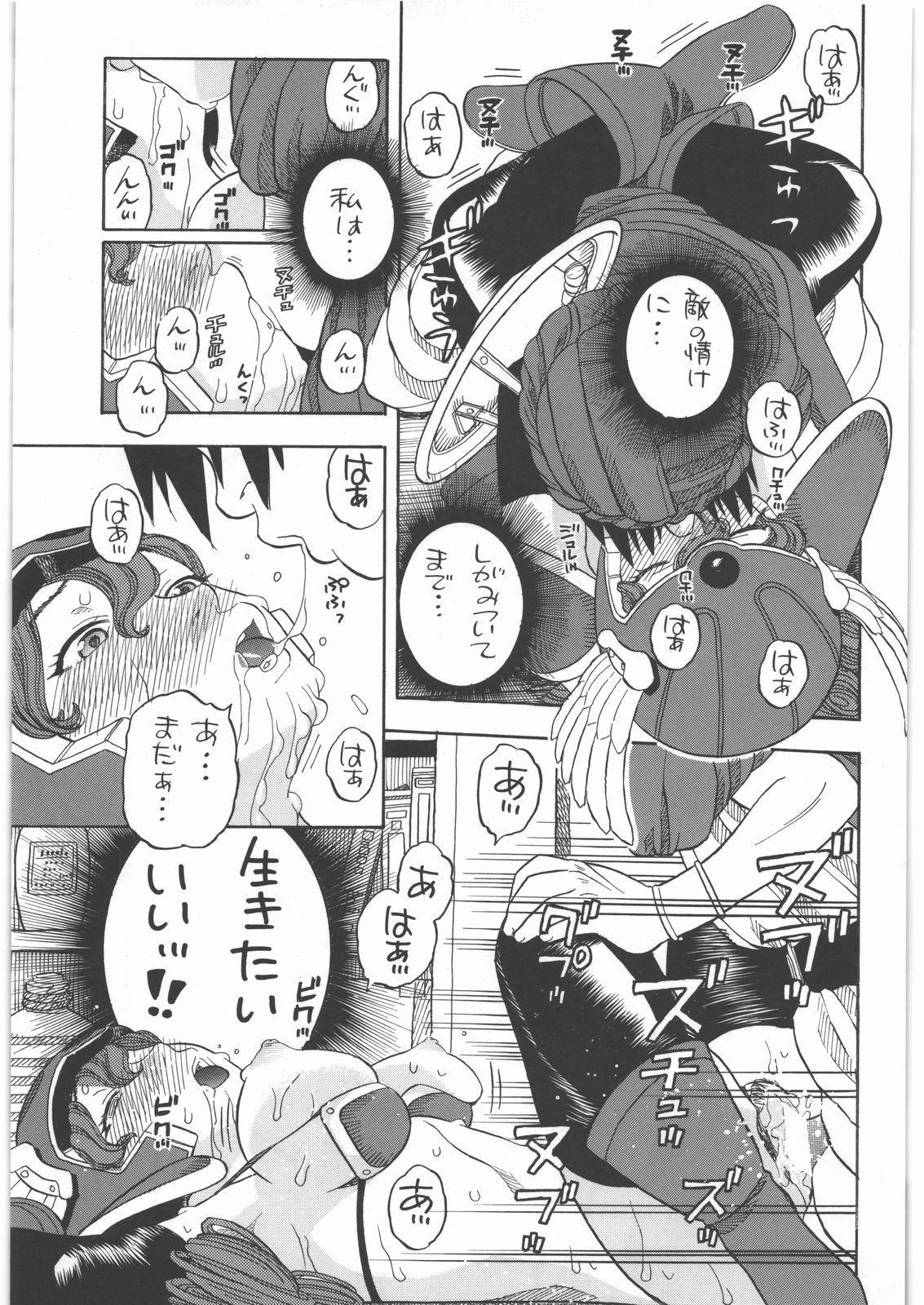 Senshi no Mezame 13