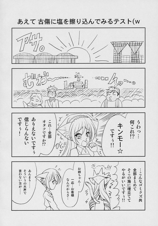 Suiseiseki-nyan 4. 2