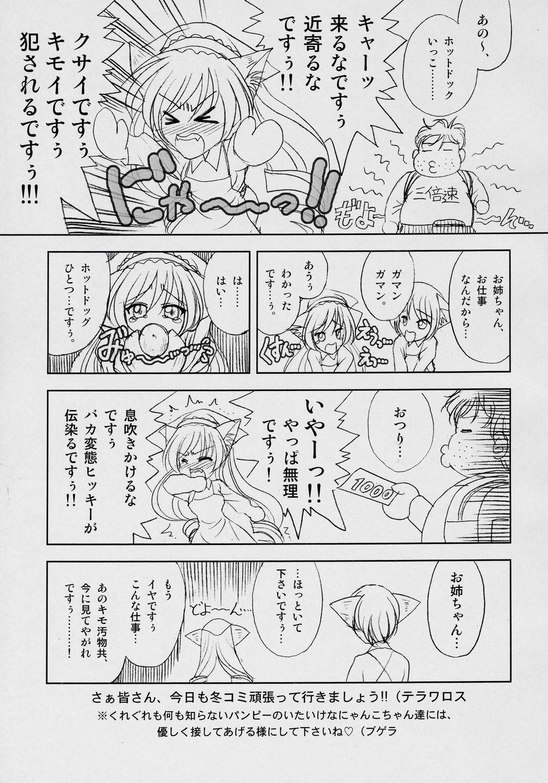 Suiseiseki-nyan 4. 3