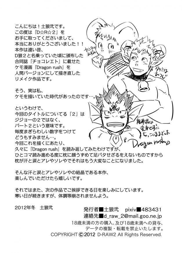 D☆R☆2 - Dragon Rush 2 27